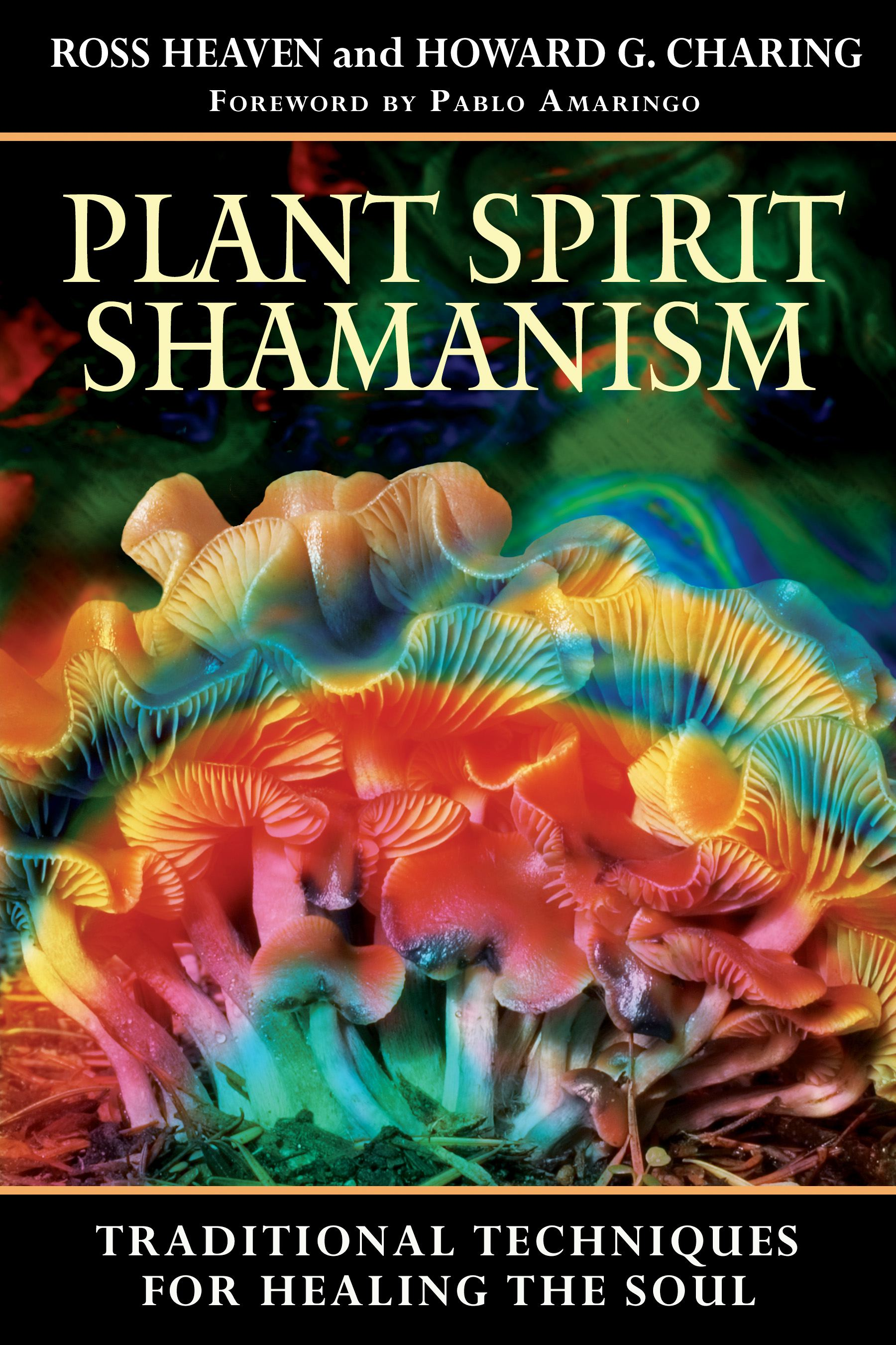Plant spirit shamanism 9781594771187 hr