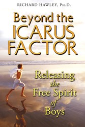 Beyond the icarus factor 9781594772283
