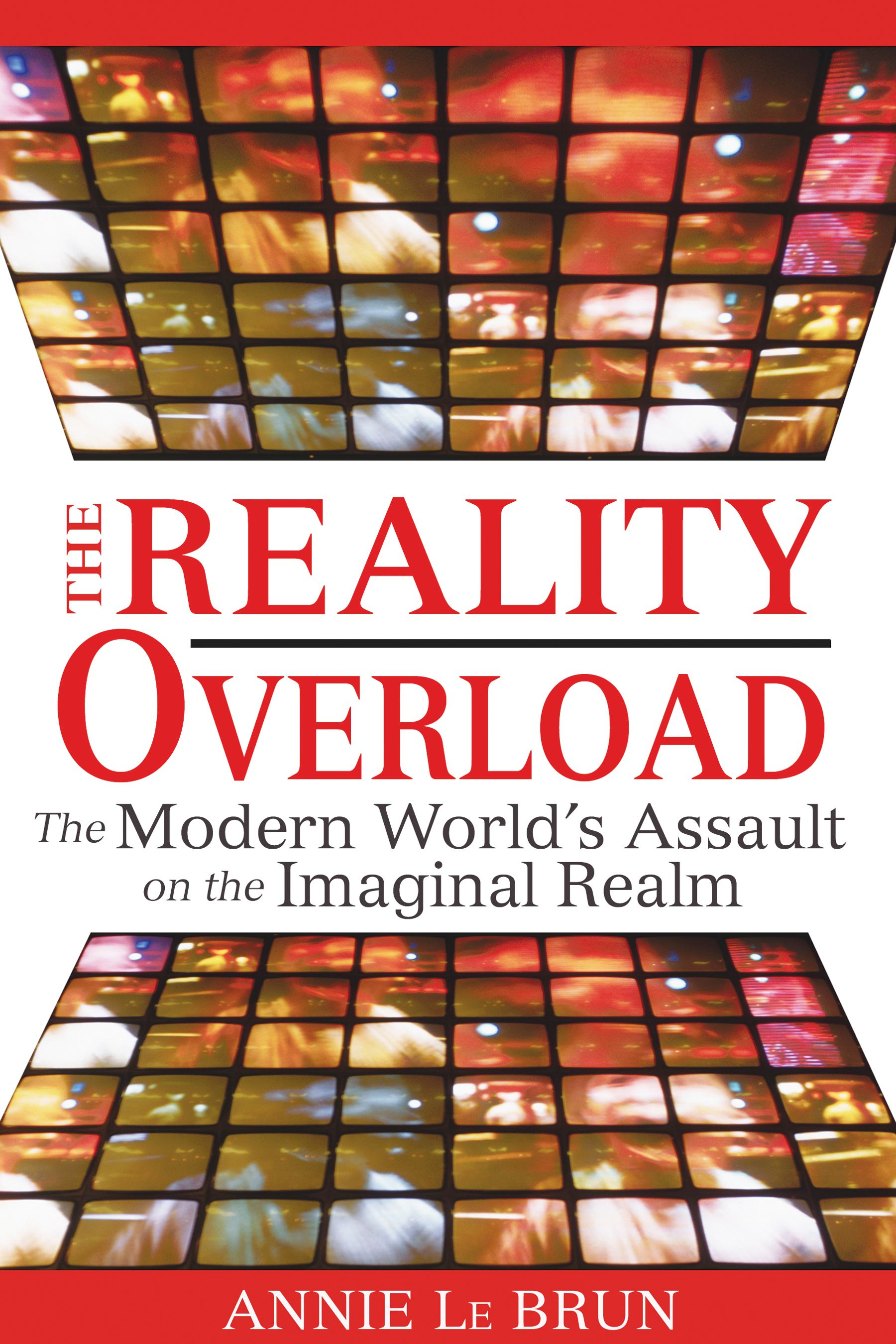 The-reality-overload-9781594772443_hr
