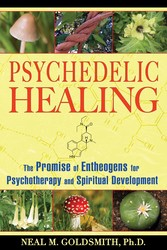 Psychedelic healing 9781594772504
