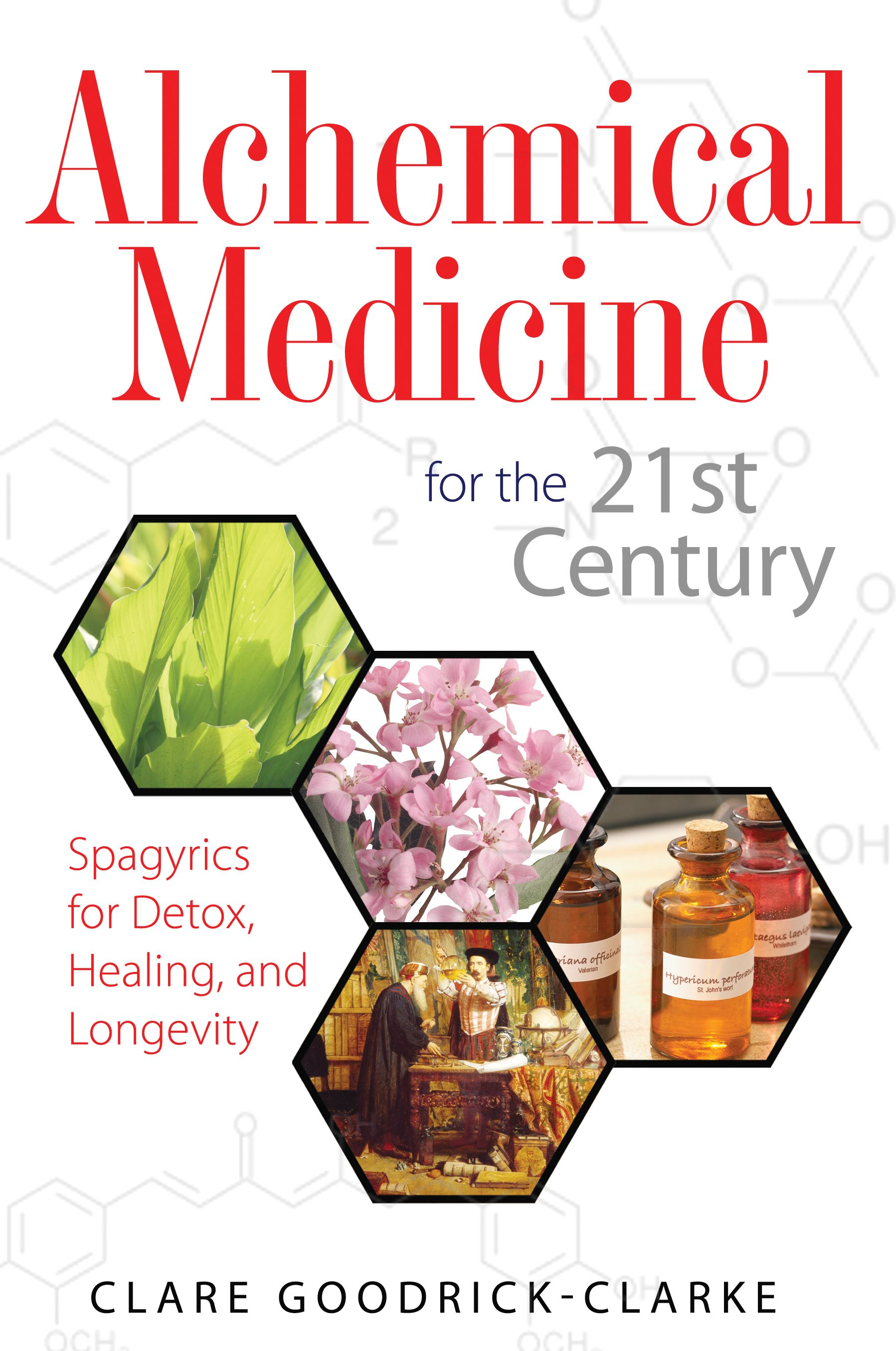 Alchemical medicine for the 21st century 9781594773198 hr