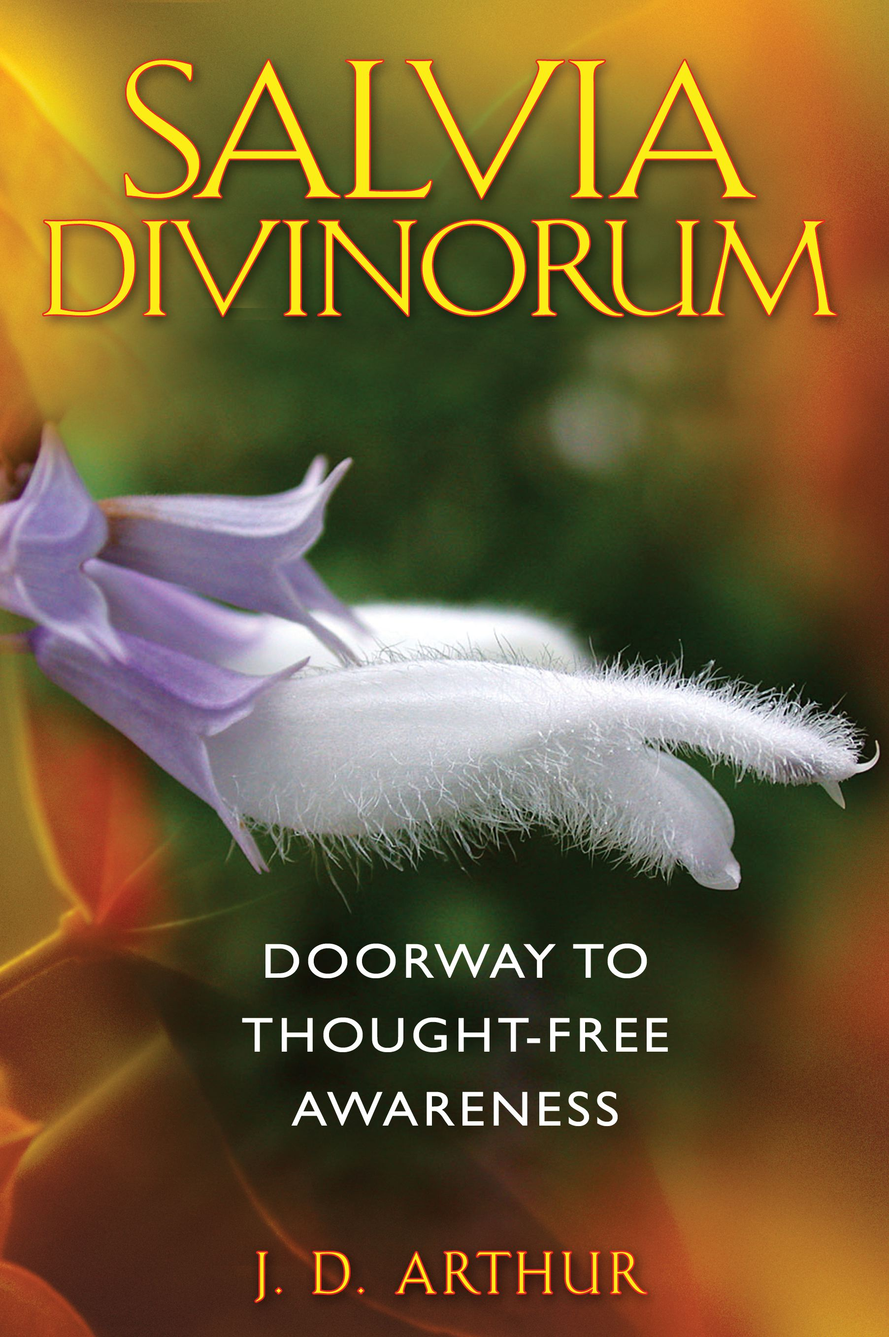 Salvia-divinorum-9781594773471_hr