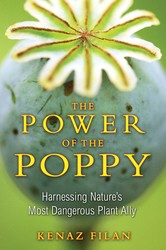 The power of the poppy 9781594773990