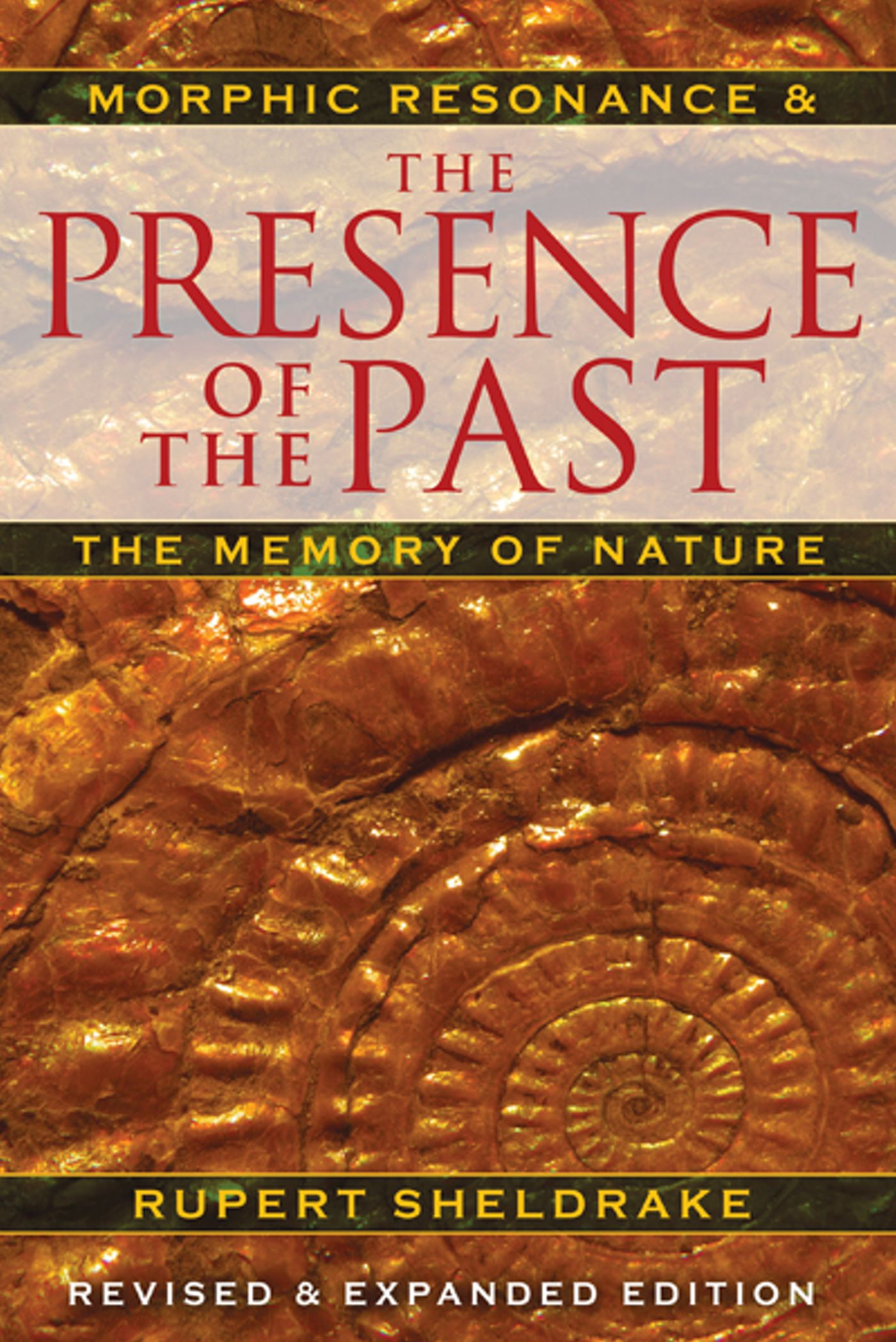 The presence of the past 9781594774614 hr