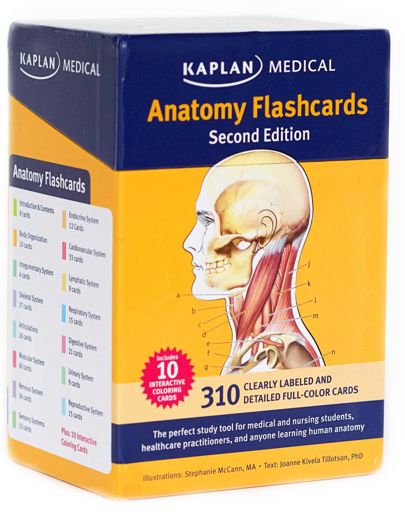 Anatomy-flashcards-9781607149842_hr