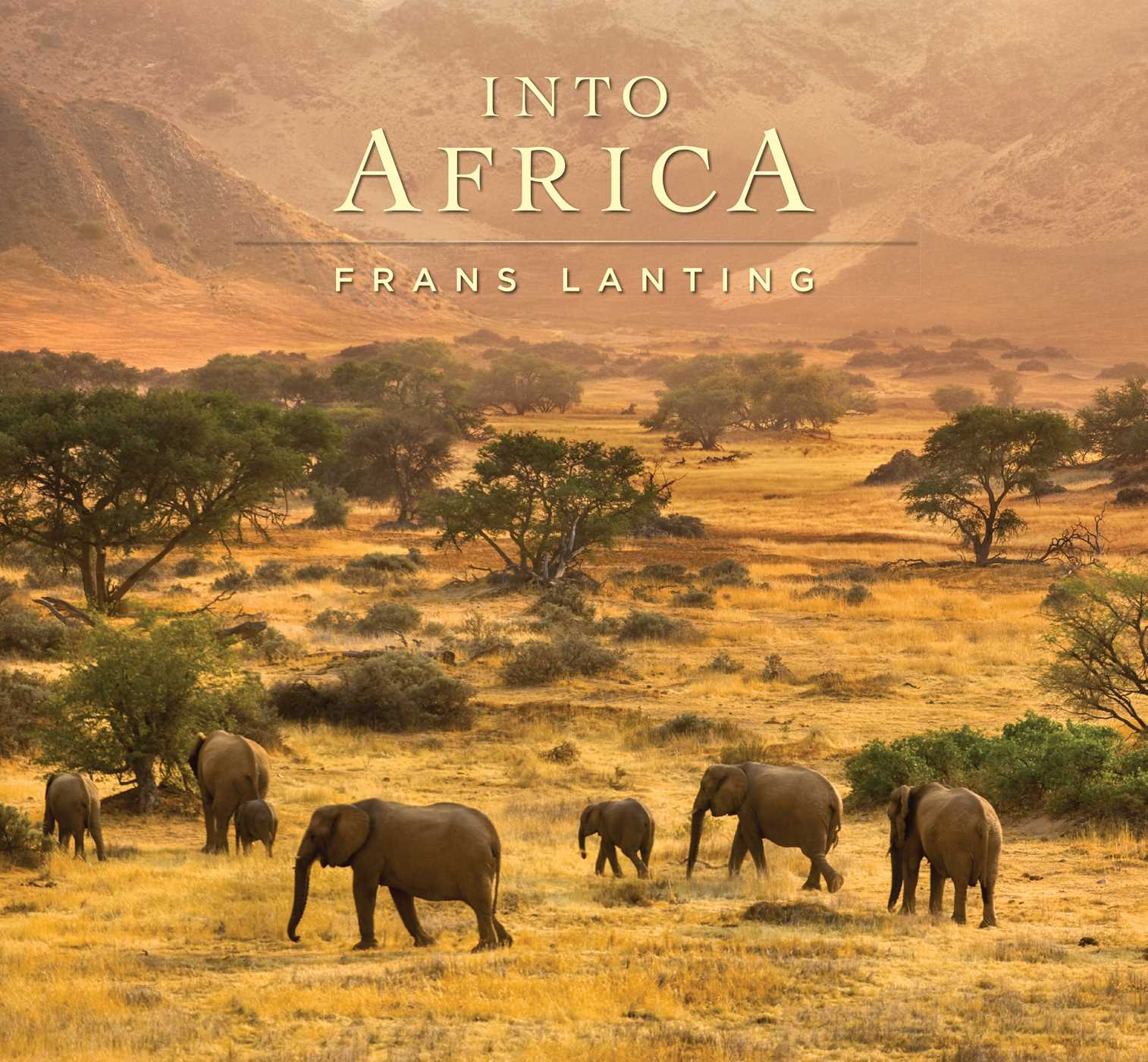 Into africa 9781608878895 hr