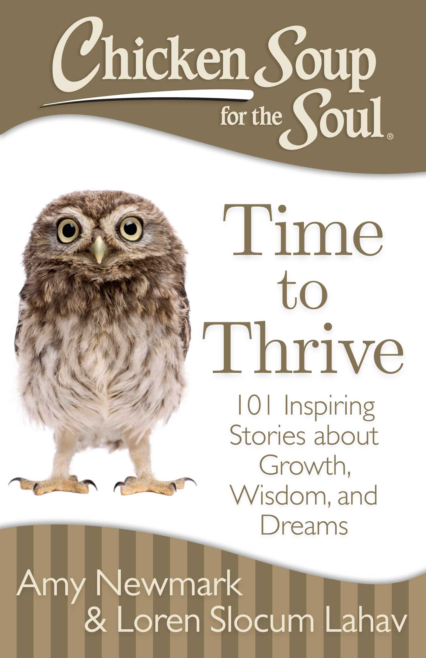 Chicken soup for the soul time to thrive 9781611592481 hr
