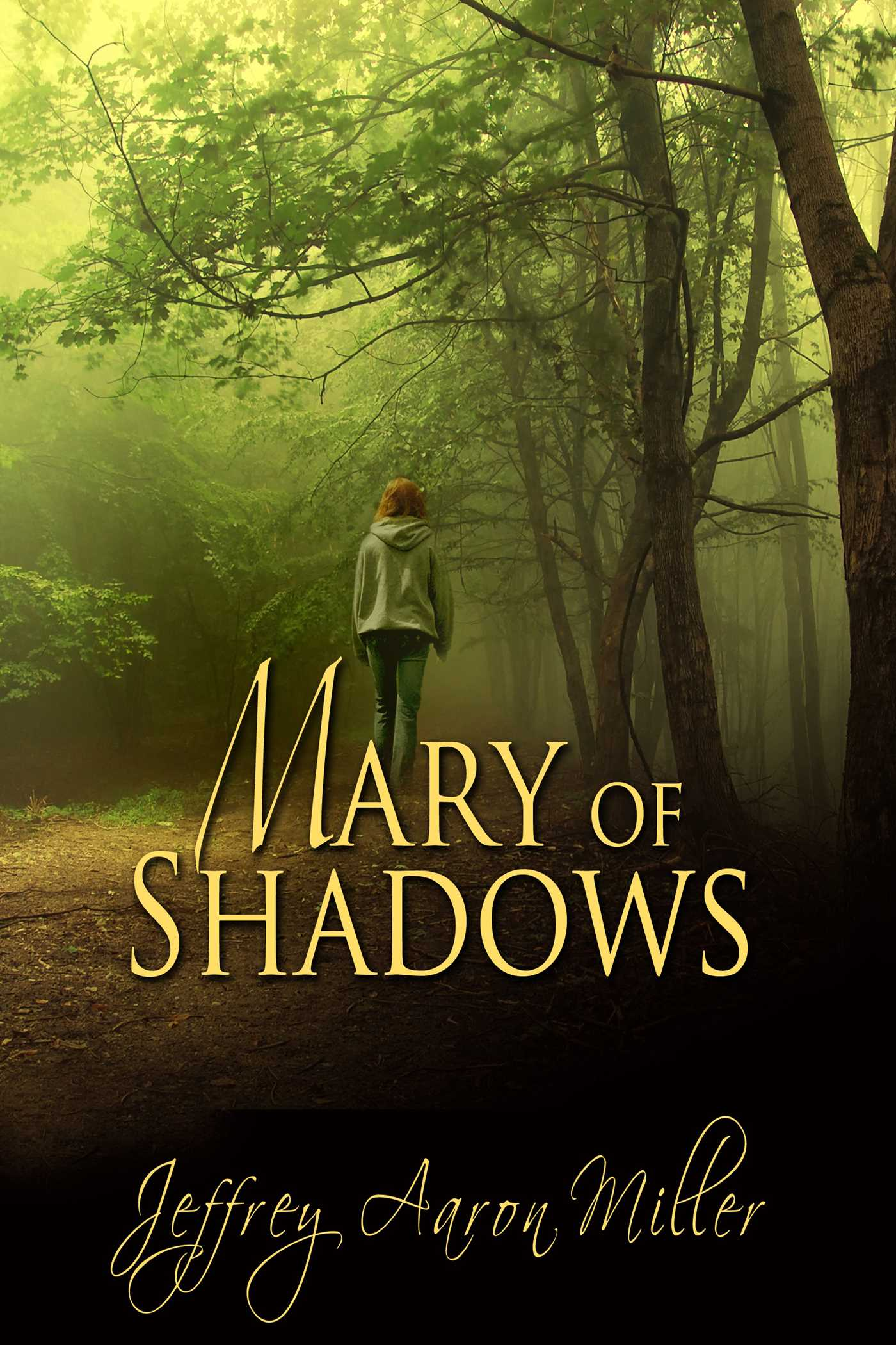 Mary of shadows 9781611606171 hr