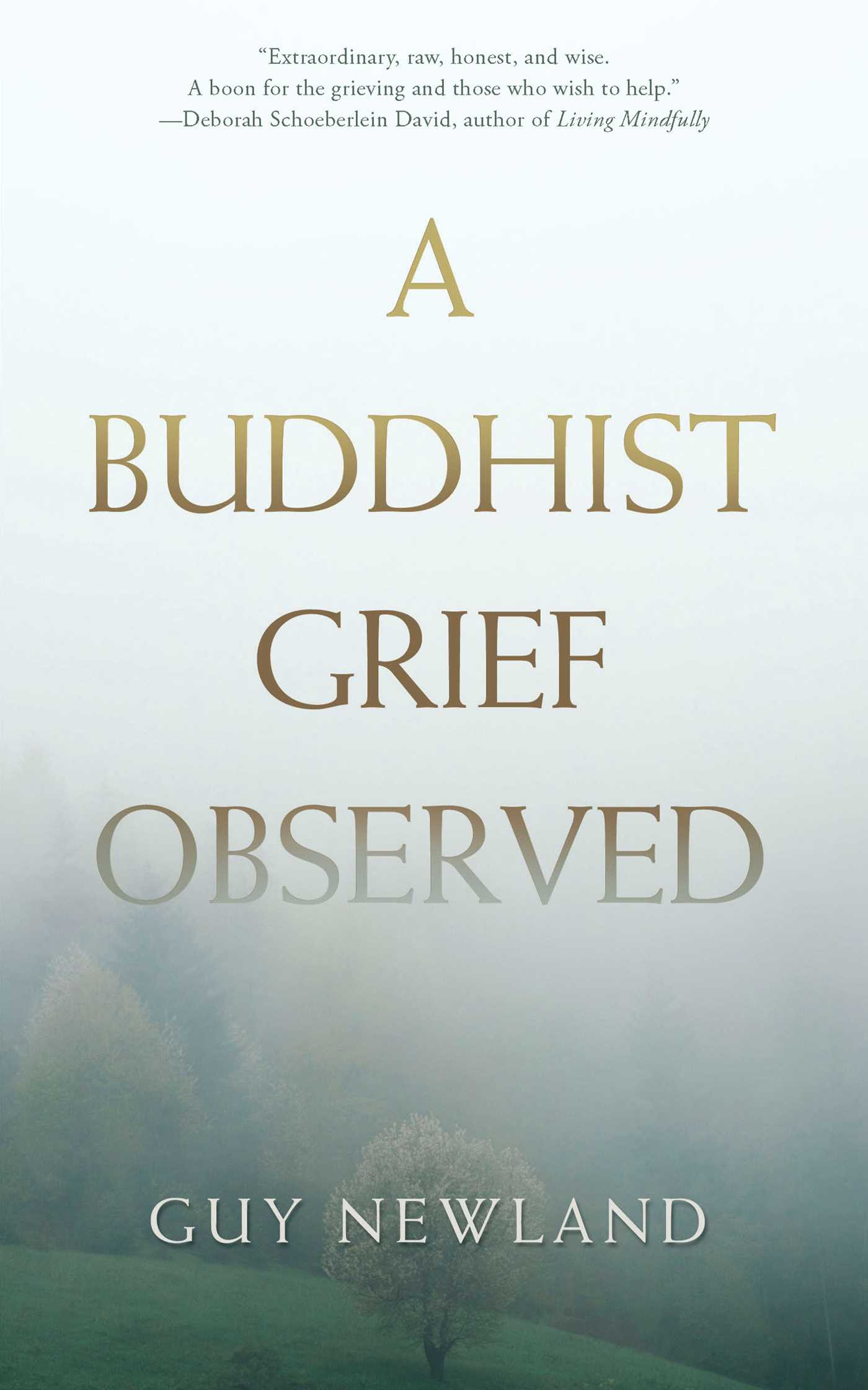 A buddhist grief observed 9781614293224 hr