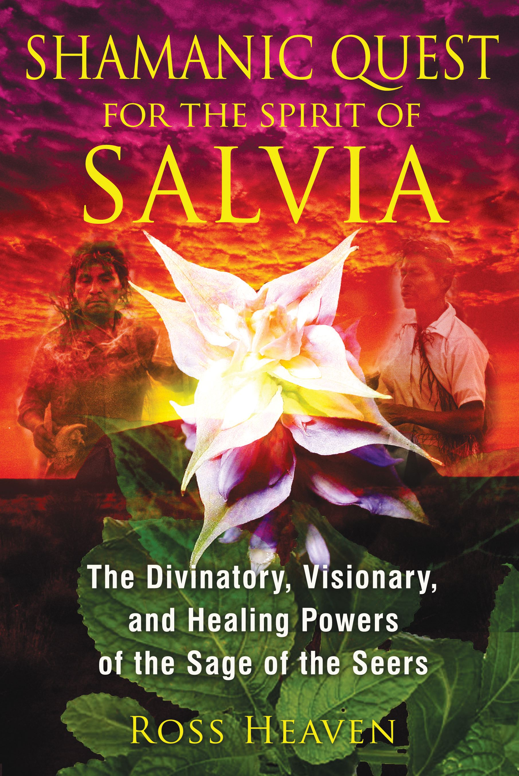 Shamanic quest for the spirit of salvia 9781620550007 hr