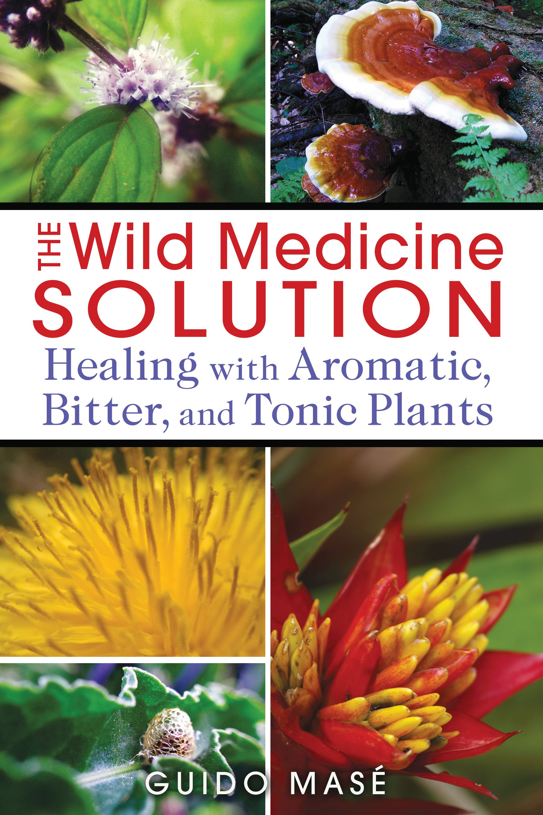 The wild medicine solution 9781620550847 hr