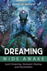 Dreaming Wide Awake