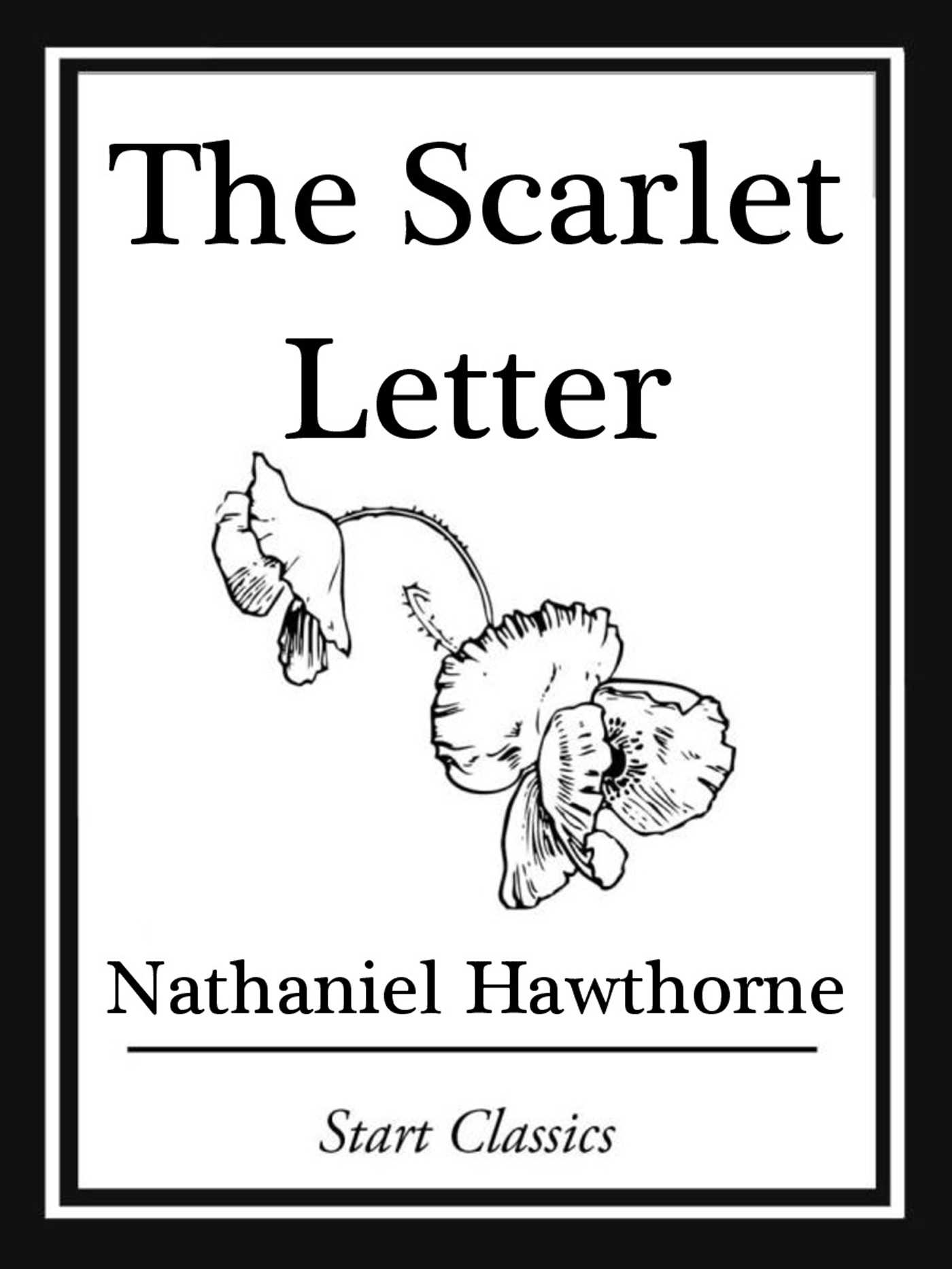 the gloomy and crude characteristics of society in the scarlet letter a novel by nathaniel hawthorne Nathaniel hawthorne, the scarlet letter (1850) back hawthorne's novel is set in the early days of america—when settlers were first beginning to make their homes in boston or, for that matter, in puritan society you do get nifty white bonnets when you hang with the puritans, though.