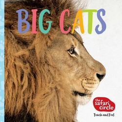 The Safari Circle: Big Cats