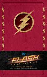 The Flash: Journal Collection (Set of 2)