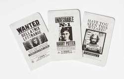 Harry Potter: Wanted Posters Pocket Notebook Collection (Set of 3)