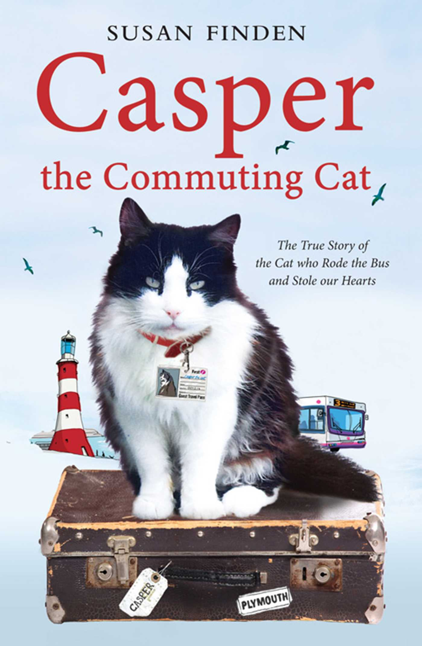 Casper-the-commuting-cat-9781849831758_hr