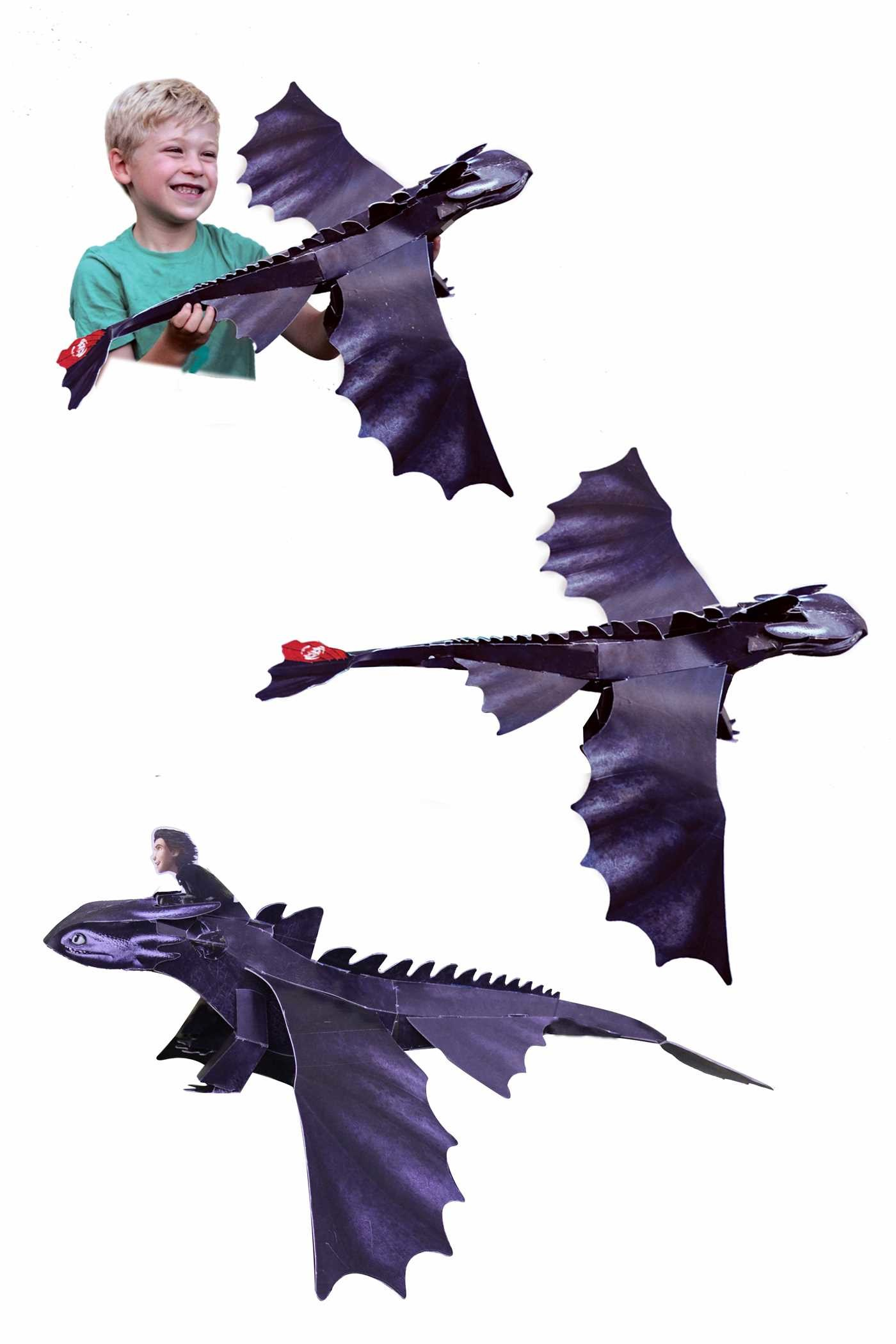 Dreamworks dragons a tale of two dragons 9780794433192.in02