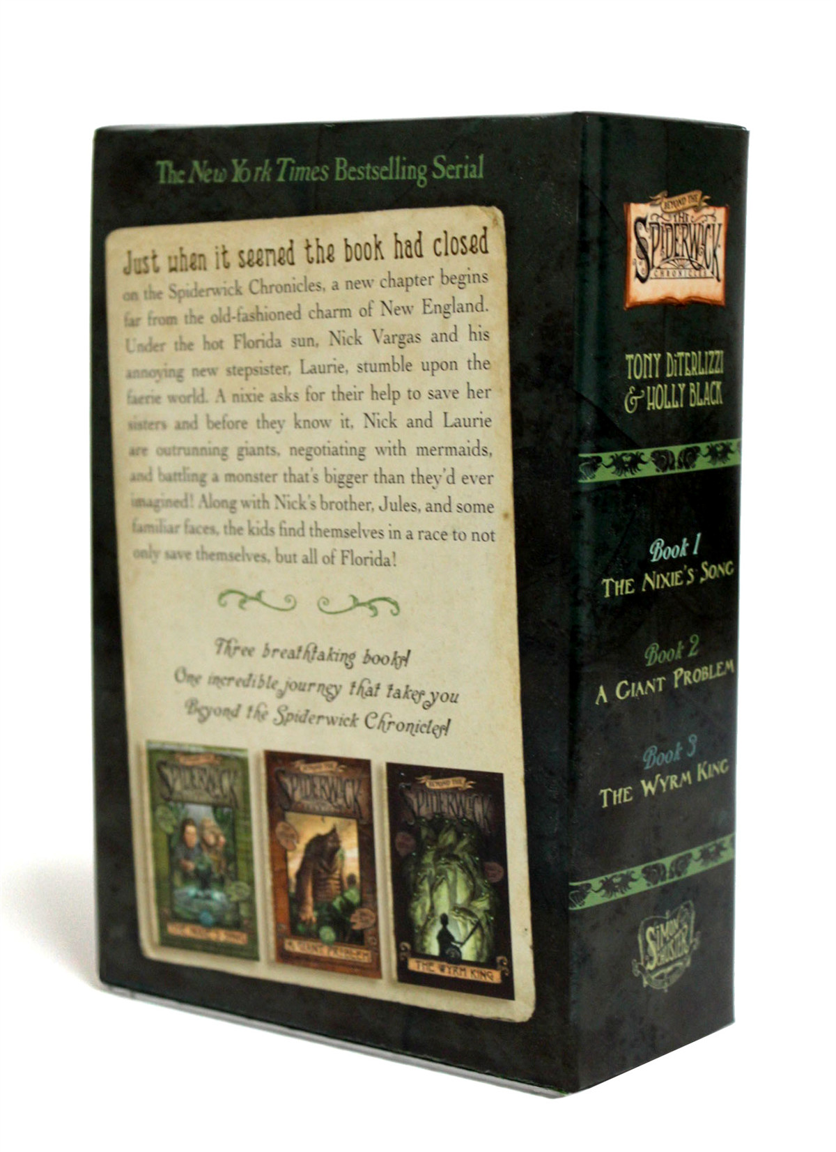 Beyond-the-spiderwick-chronicles-(boxed-set)-9781416990116.in01