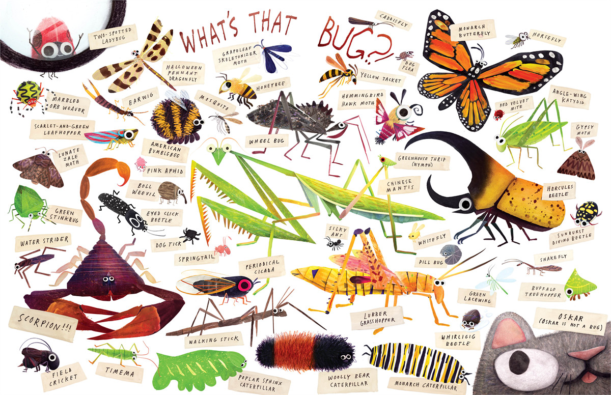 Some bugs 9781442458802.in05