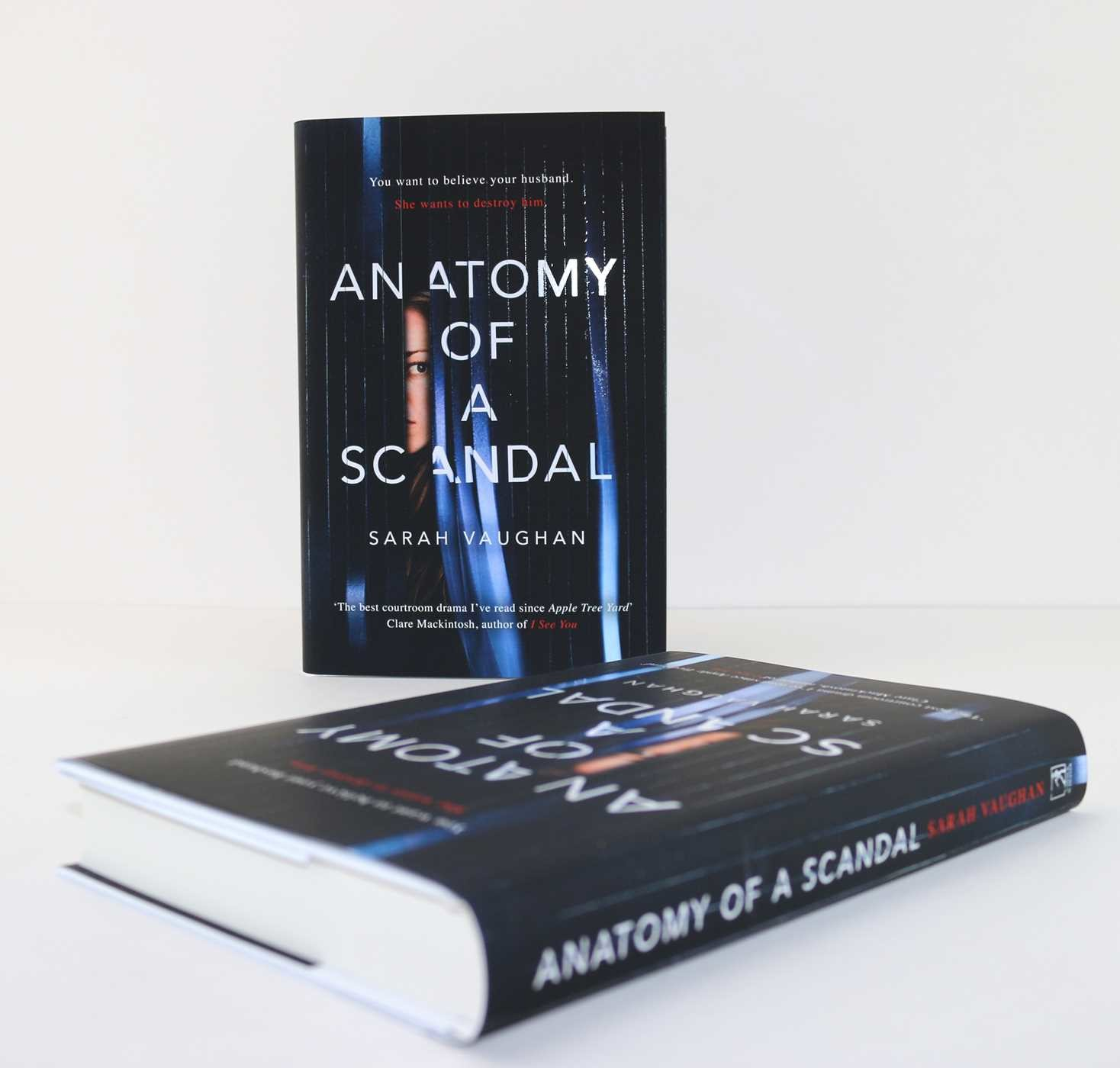 Anatomy of a scandal 9781471164996.in01