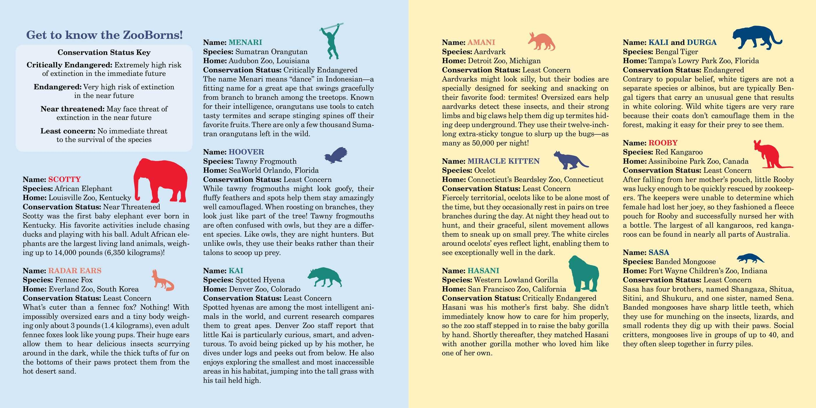 ZooBorns!   Book by Andrew Bleiman, Chris Eastland   Official Publisher Page   Simon & Schuster ...