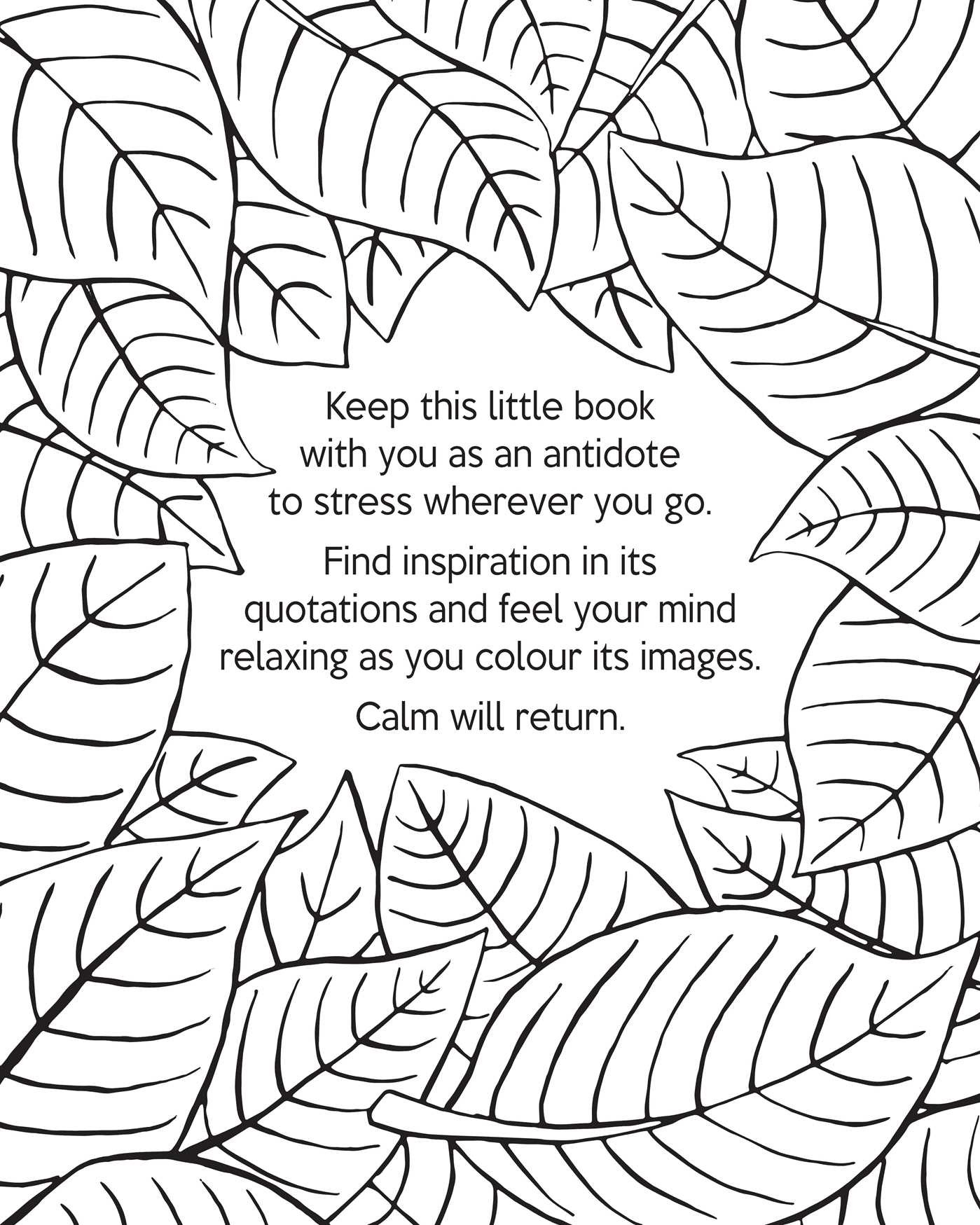 Coloring pages relaxing -  The Little Book Of Calm Coloring 9781501137556 In01