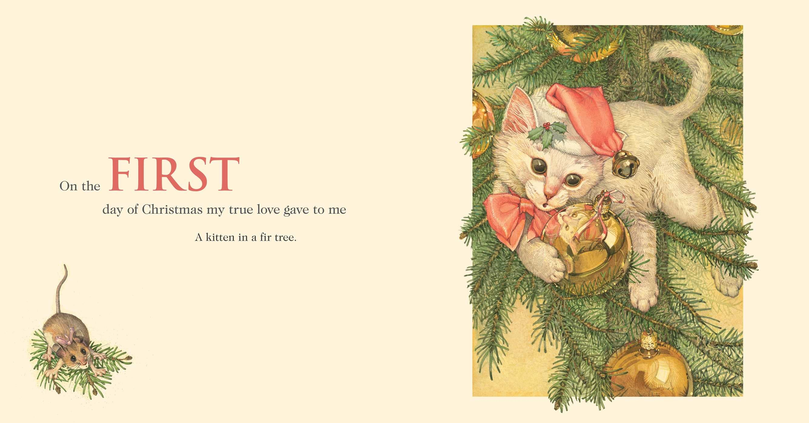 The Twelve Days of Christmas Cats | Book by Don Daily | Official ...