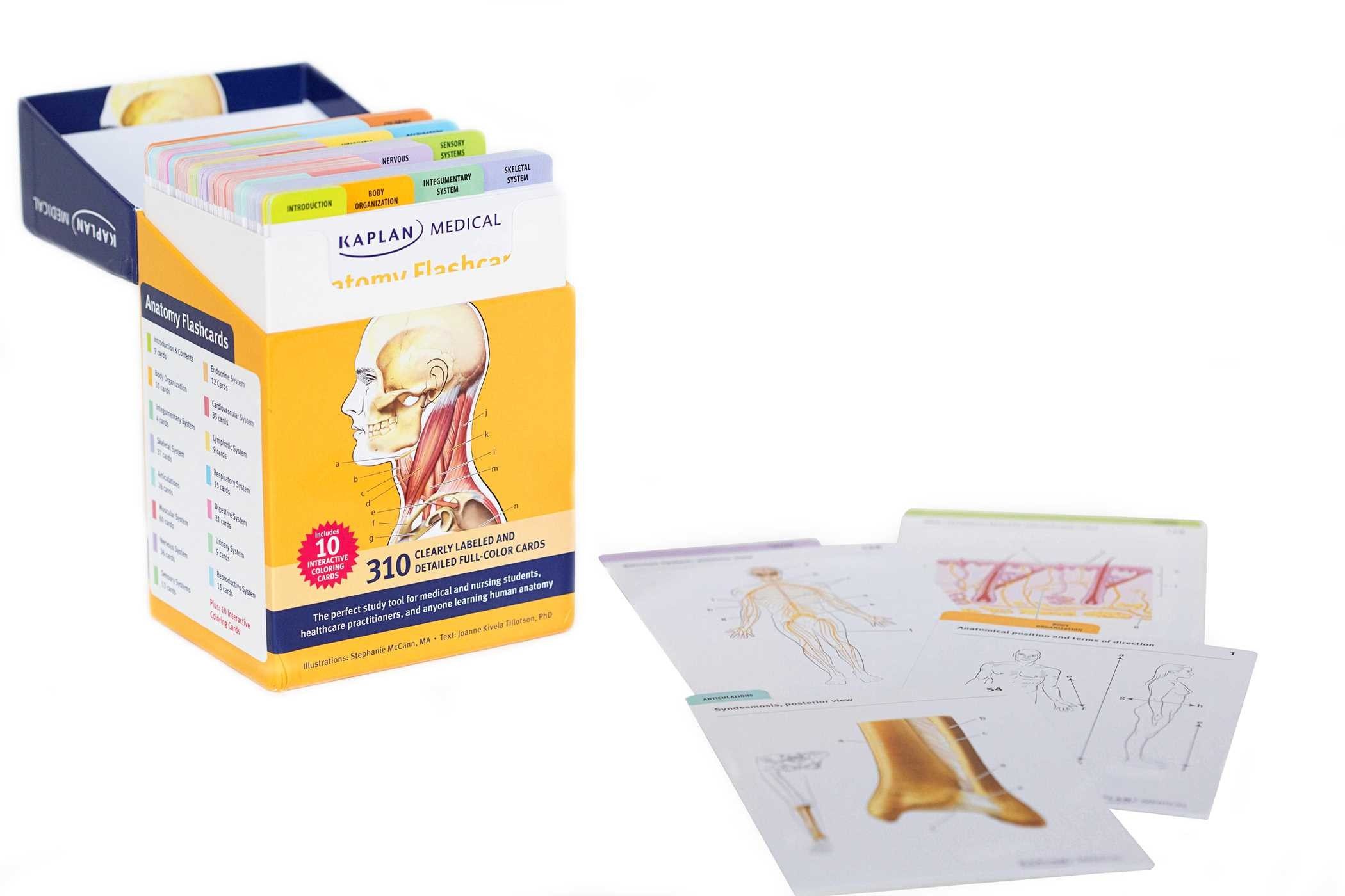 Anatomy-flashcards-9781607149842.in01