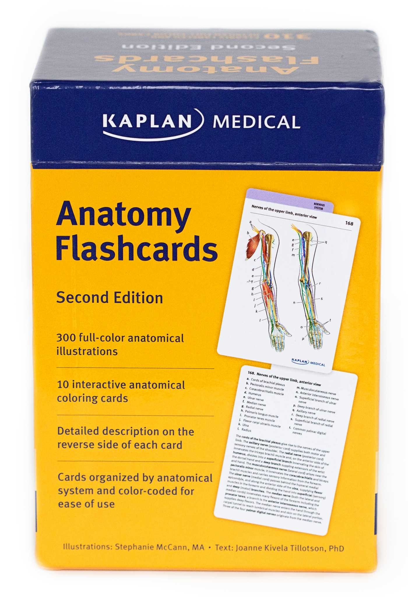 Anatomy-flashcards-9781607149842.in02