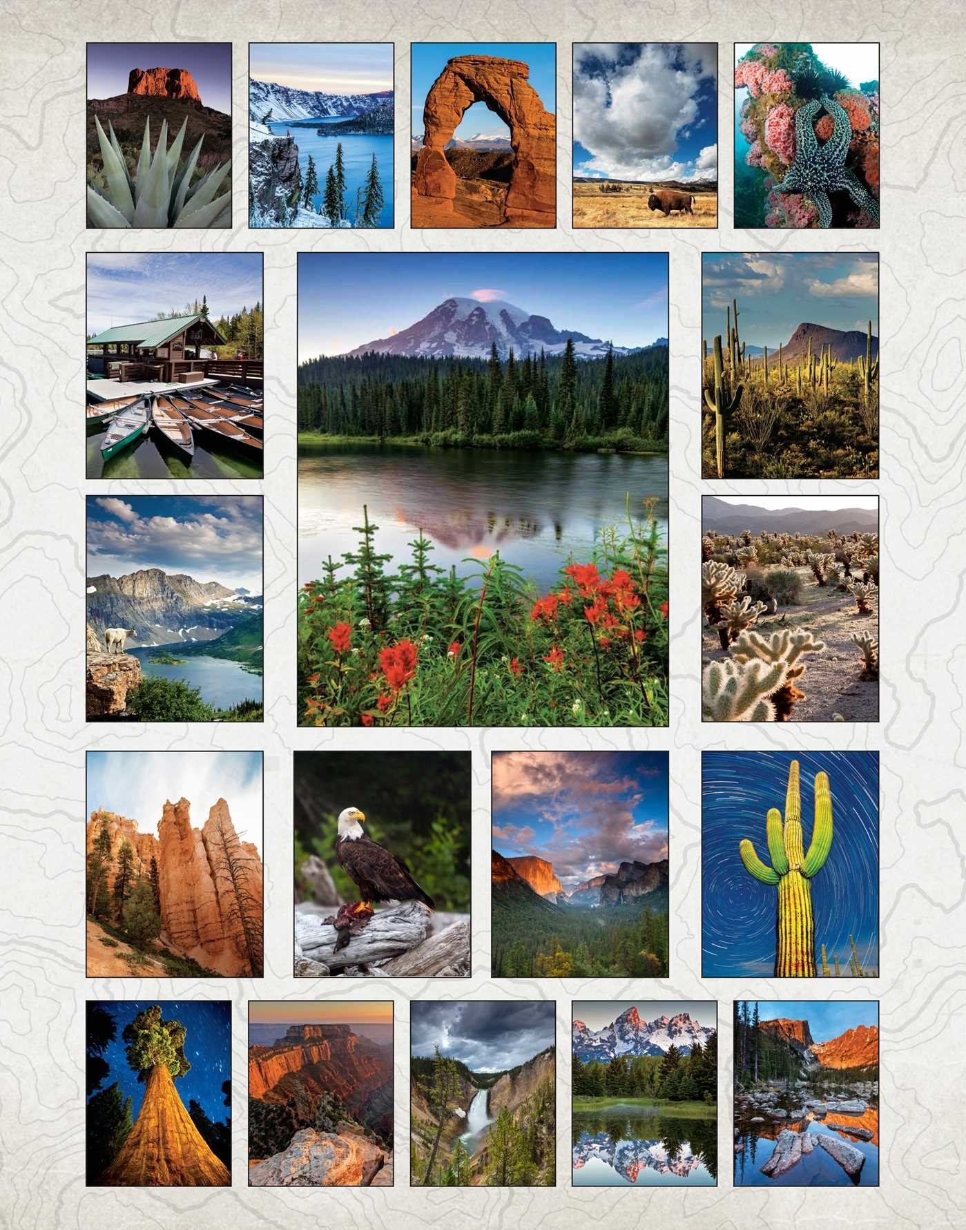 The coloring book poster -  The National Parks Poster Coloring Book 9781608879595 In08