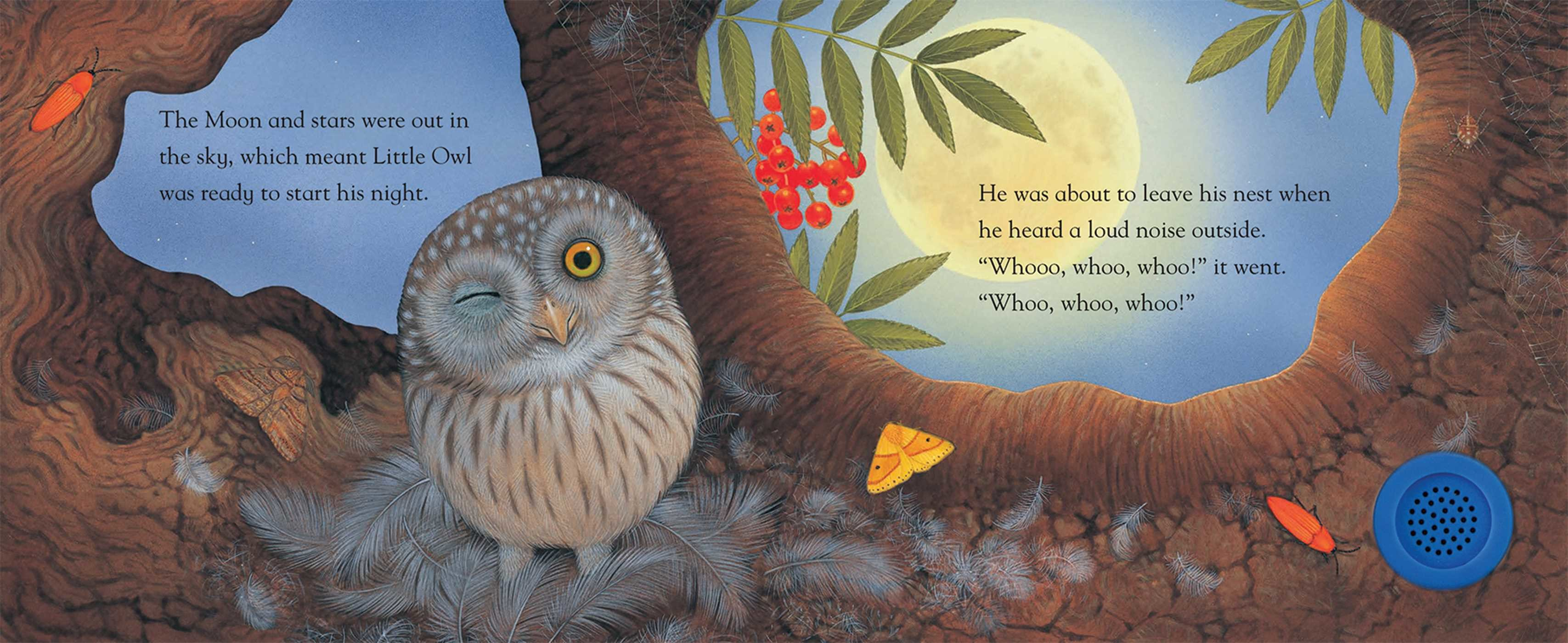 Little owl and the noisy night book by a j wood maurice pledger little owl and the noisy night 978162686939401 publicscrutiny Image collections