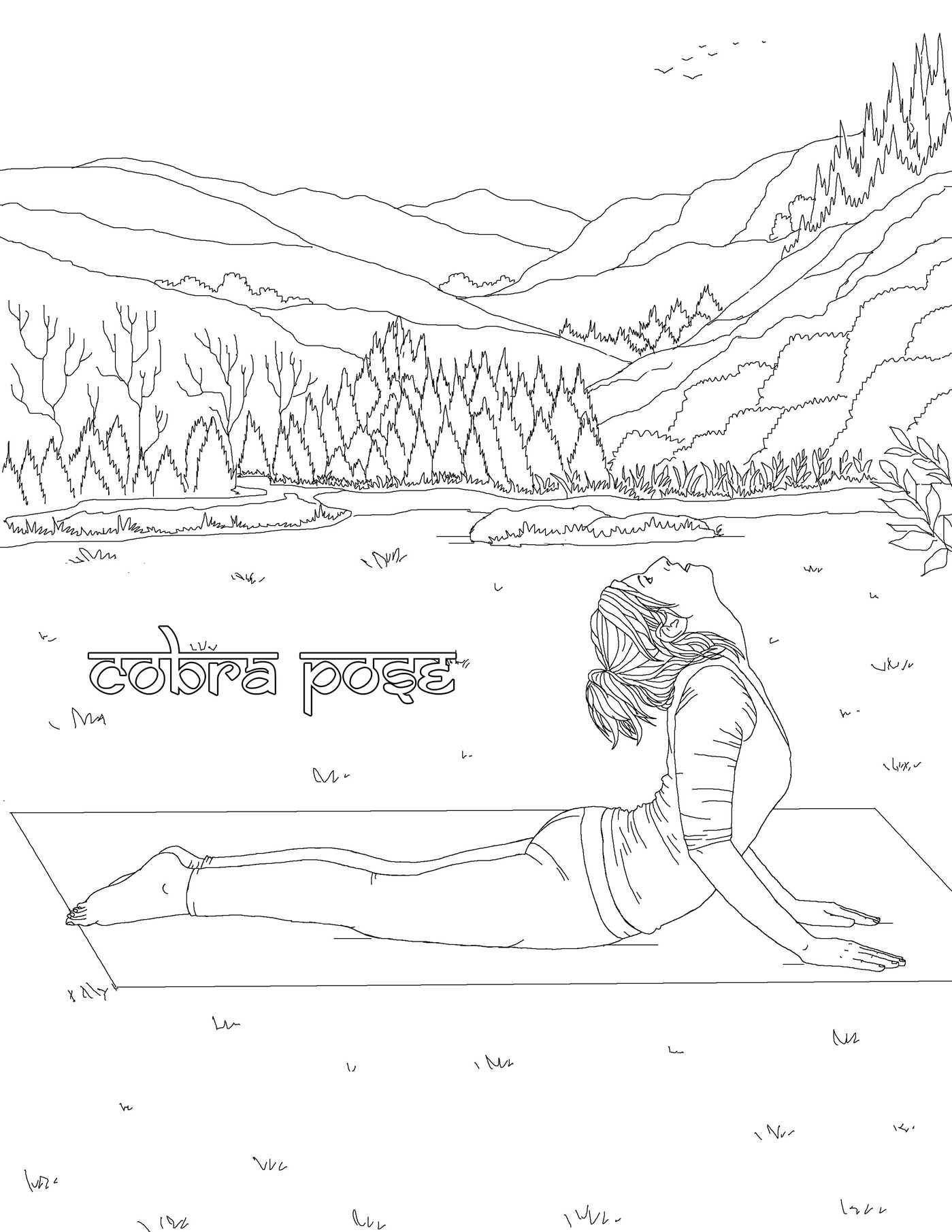 The Yoga Poses Adult Coloring Book 9781682611302in02
