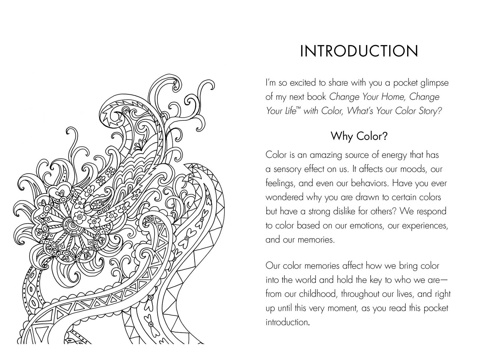 what u0027s your color story book by moll anderson official