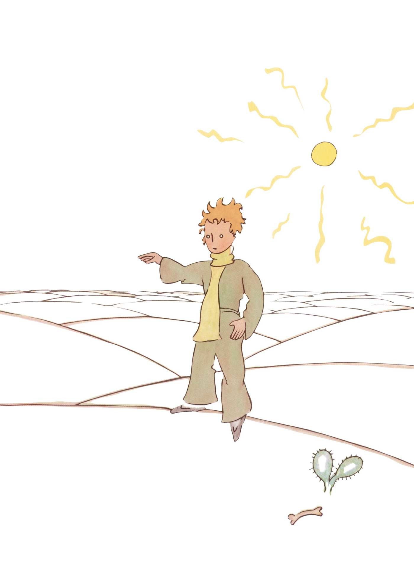 The little prince 9782374950136.in04