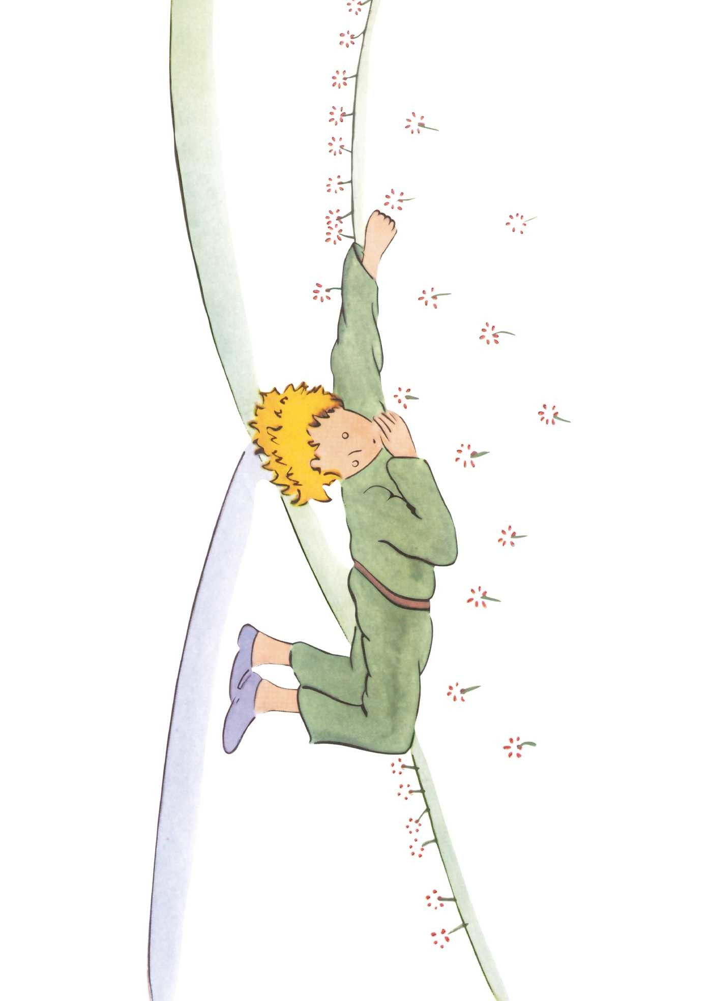 The little prince 9782374950136.in05