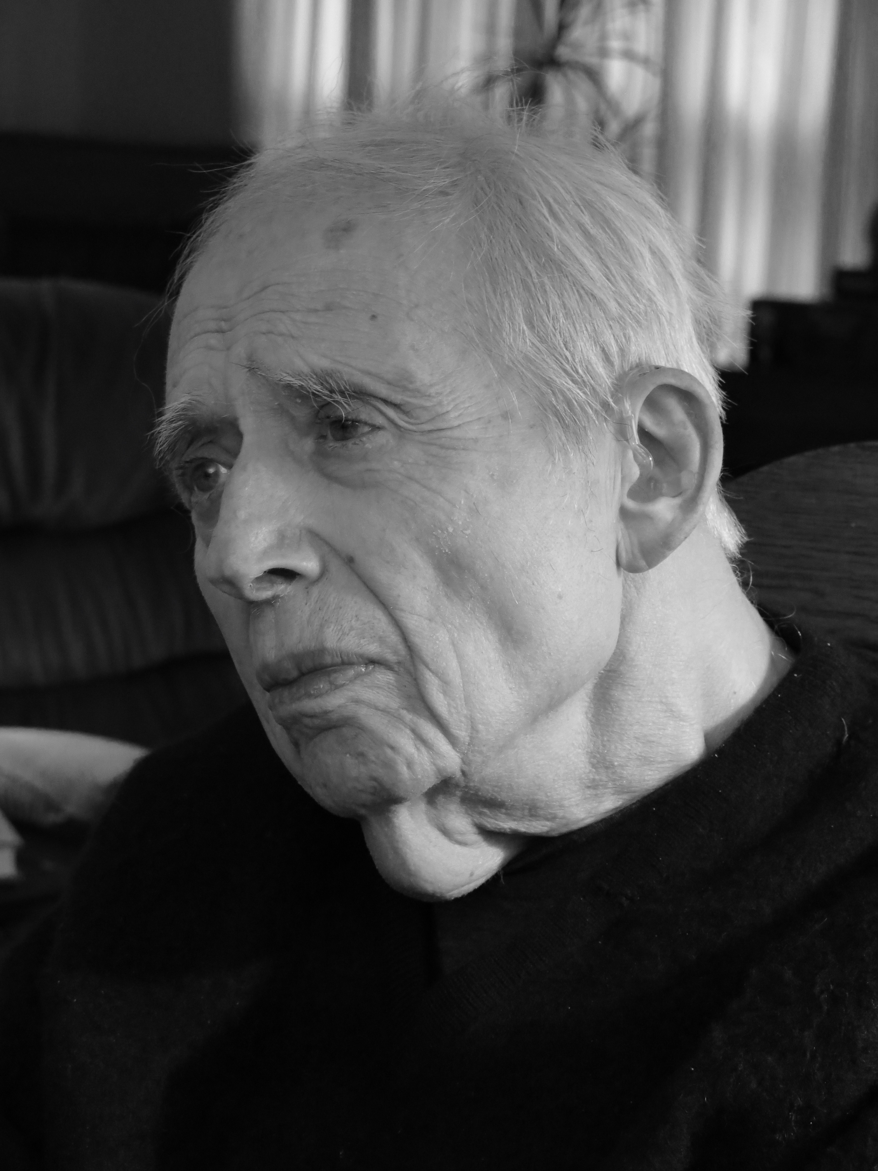 harold bloom essay hamlet And in a concluding essay, harold bloom meditates on the originality of along with an analysis of the characters hamlet and ophelia and in a concluding essay.
