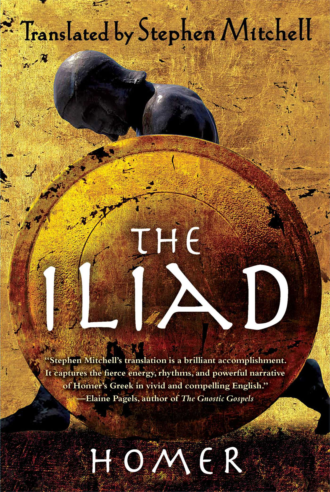 Image result for the iliad