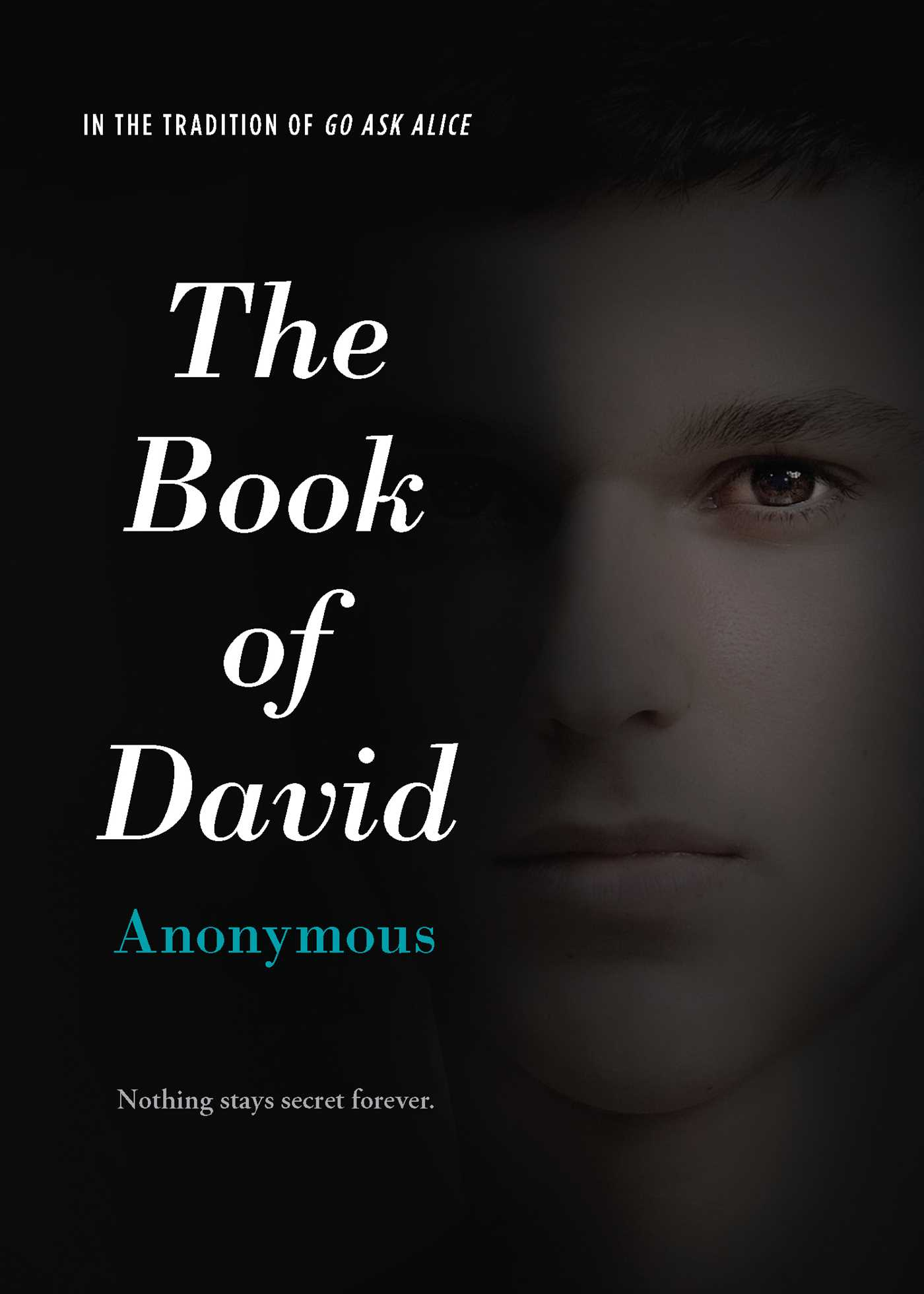 Book-of-david-9781442489851_hr