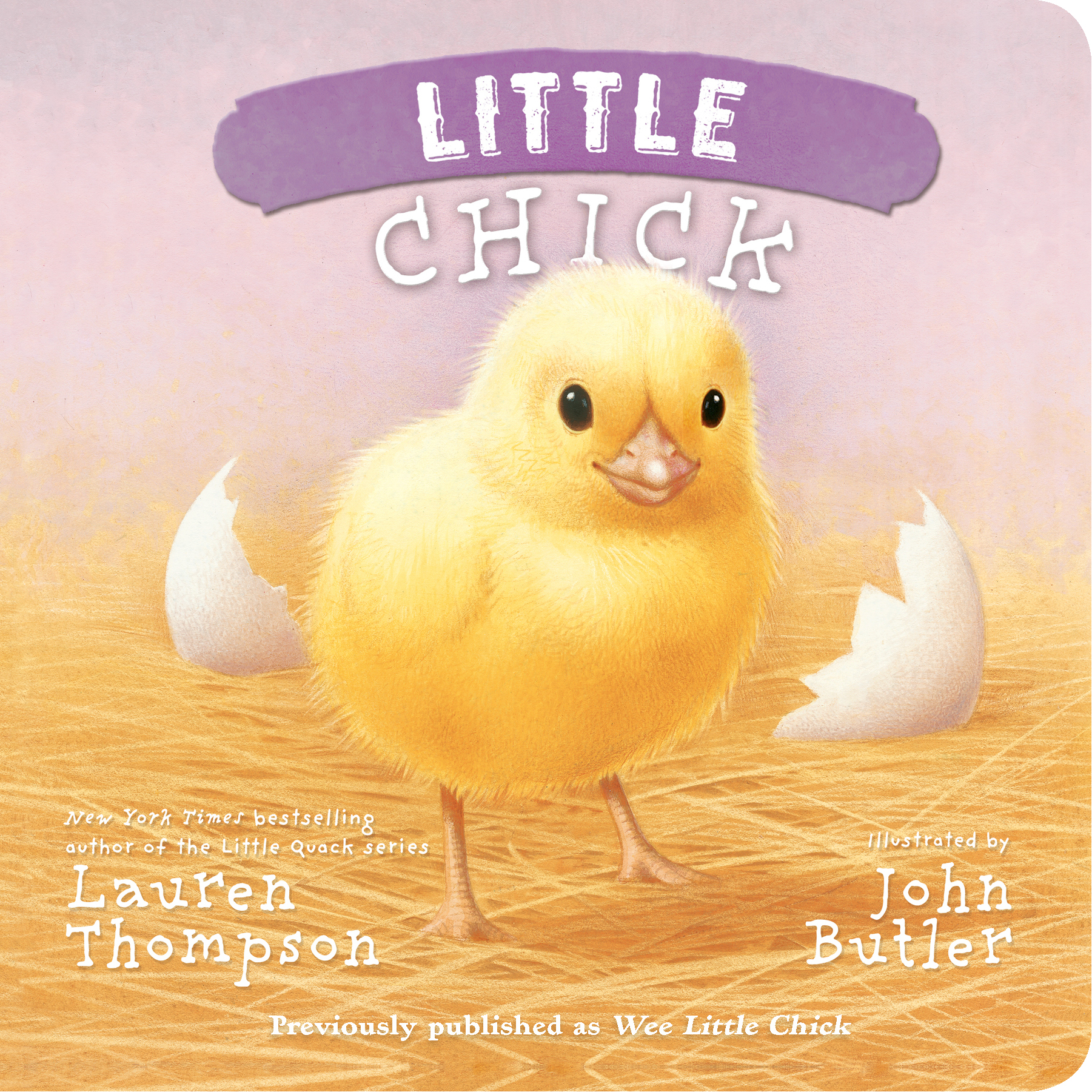 Little-chick-9781442493117_hr