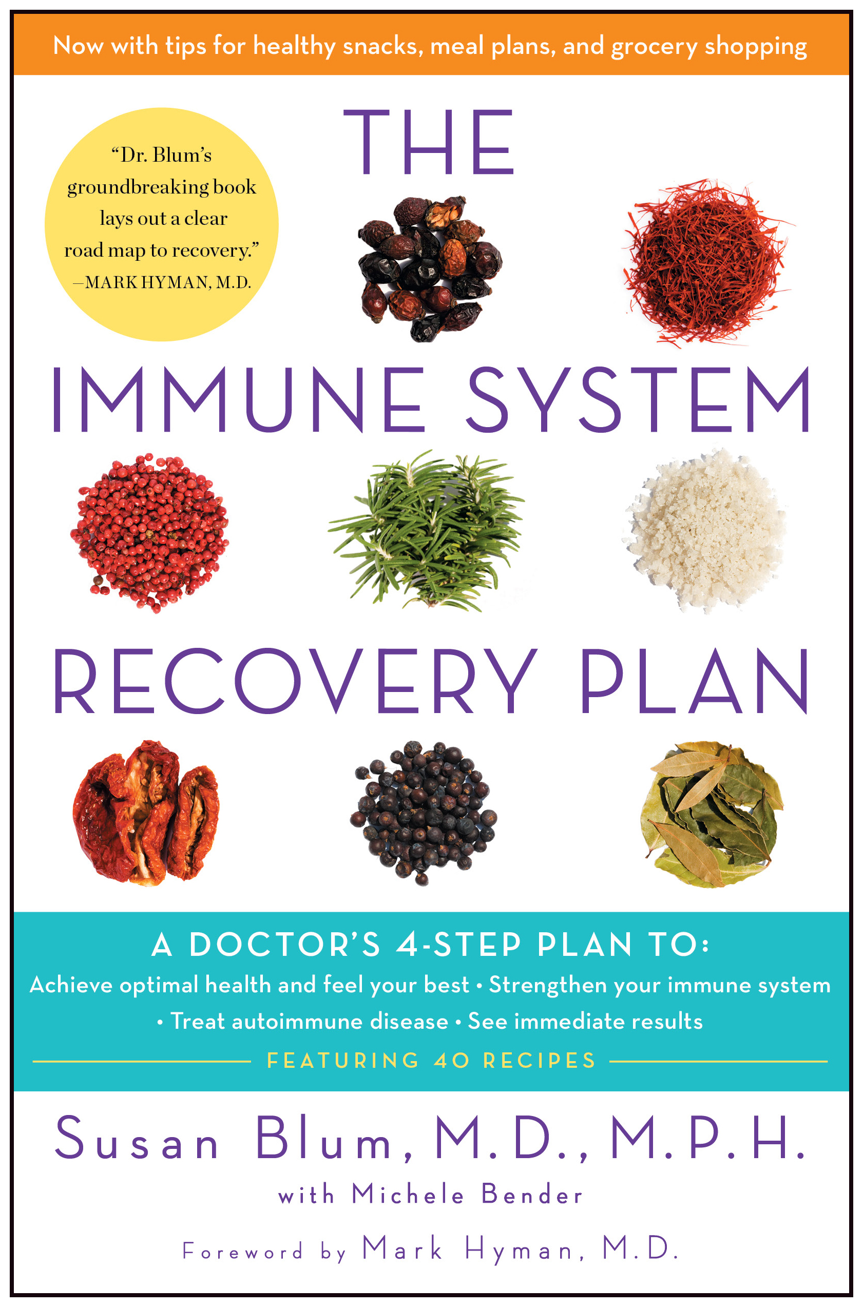 Immune-system-recovery-plan-9781451694994_hr
