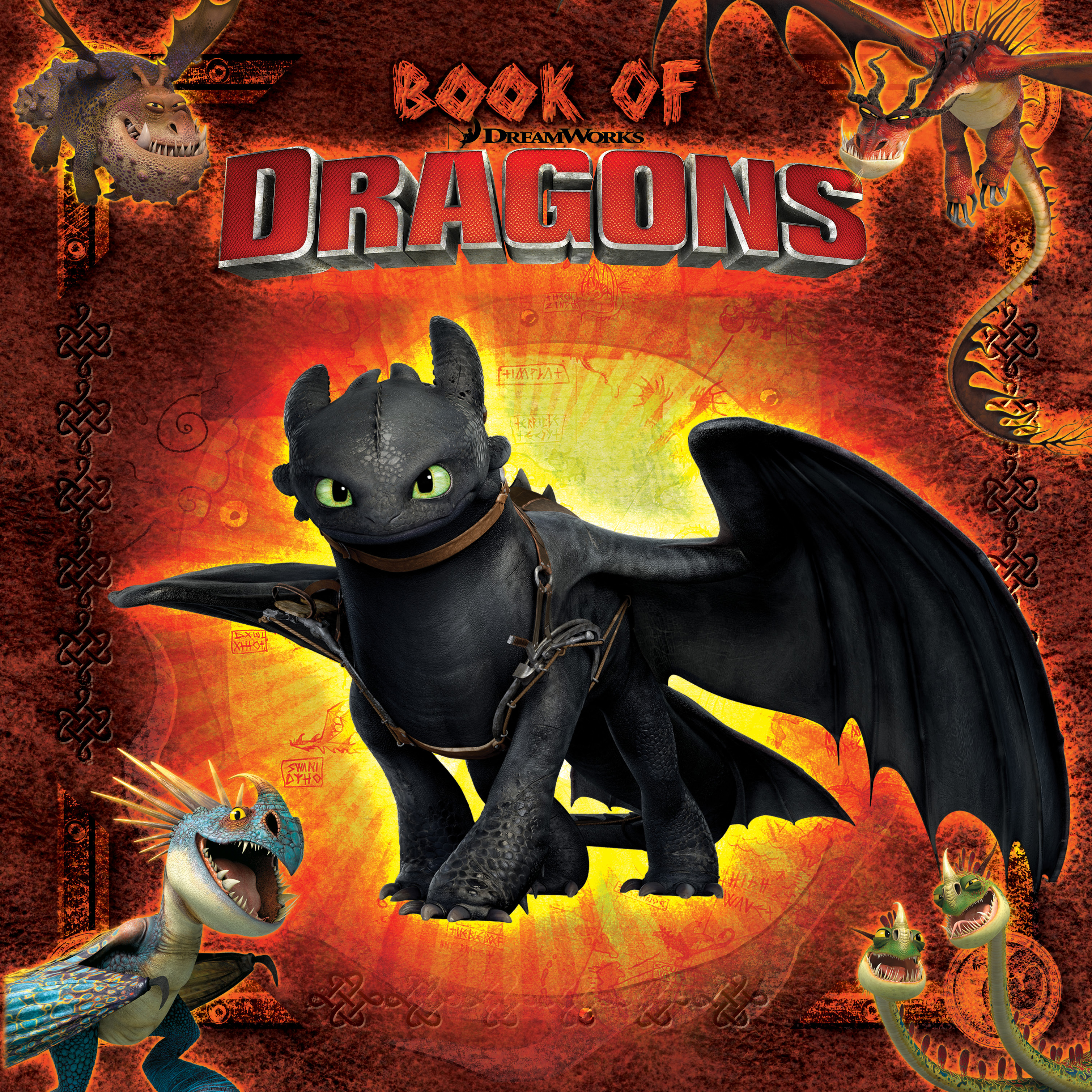 How to Train Your Dragon TV Books by Cordelia Evans Maggie Testa