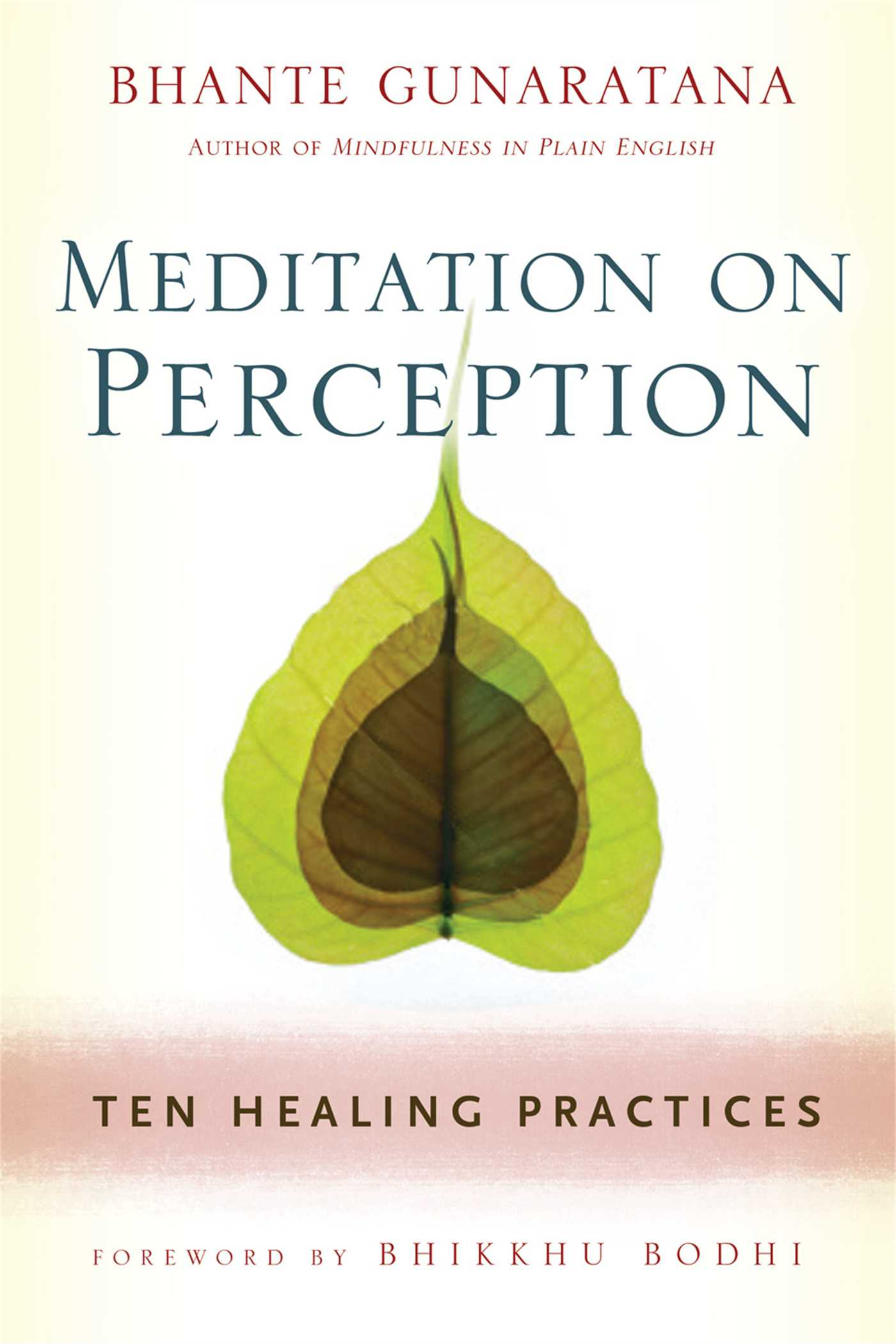 Meditation-on-perception-9781614290858_hr