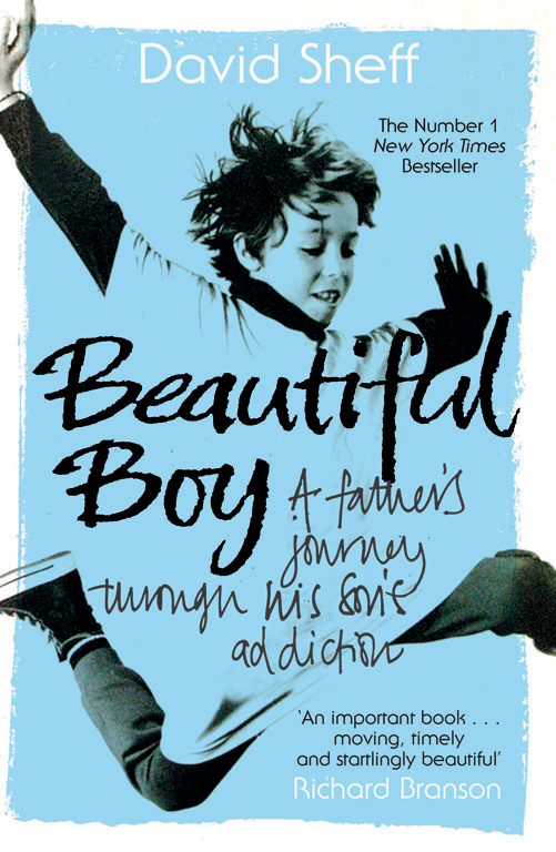 Beautiful Boy | Book by David Sheff | Official Publisher Page ...