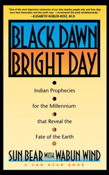 Black Dawn, Bright Day