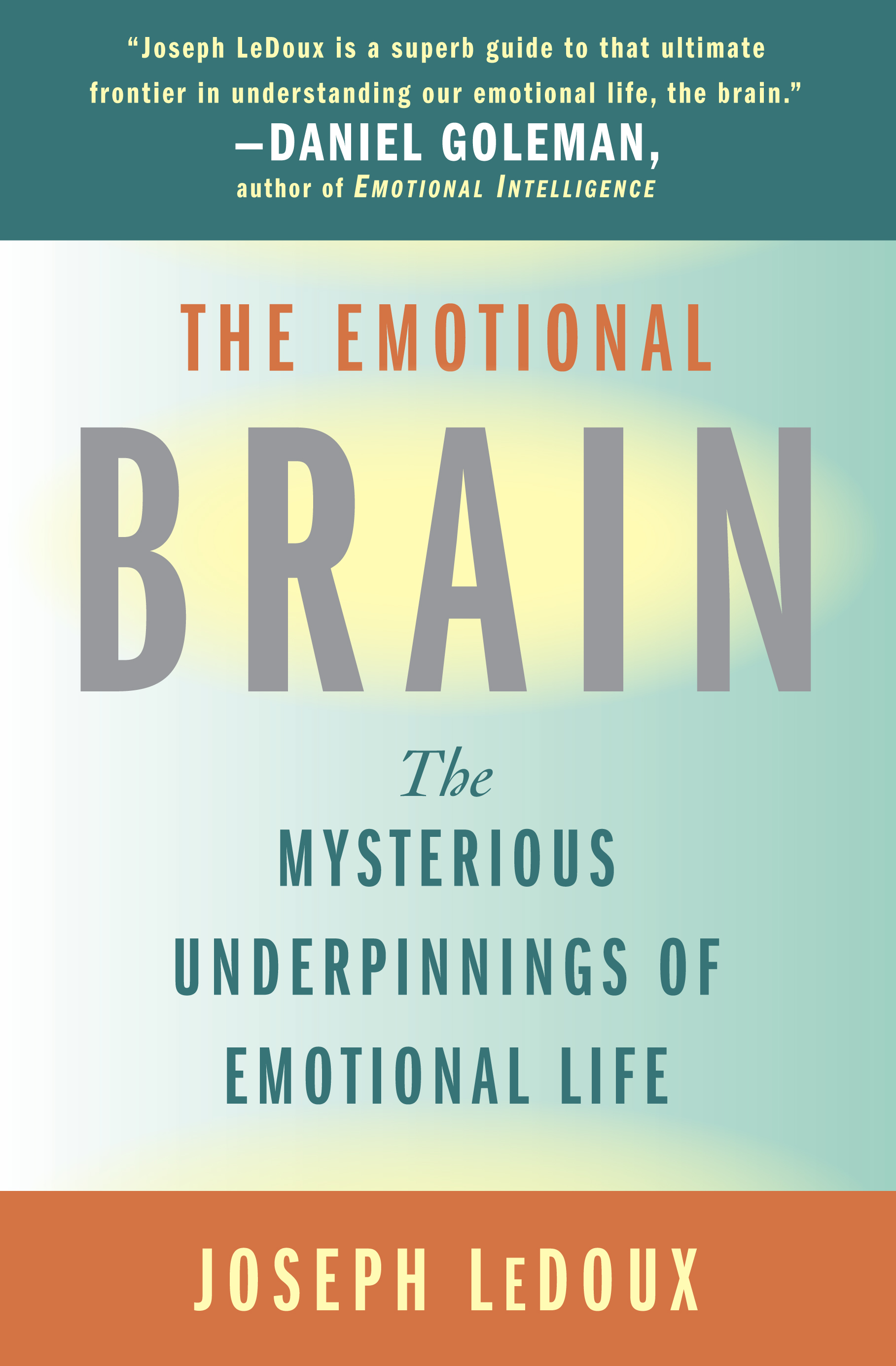 evolving brains scientific american library ebook