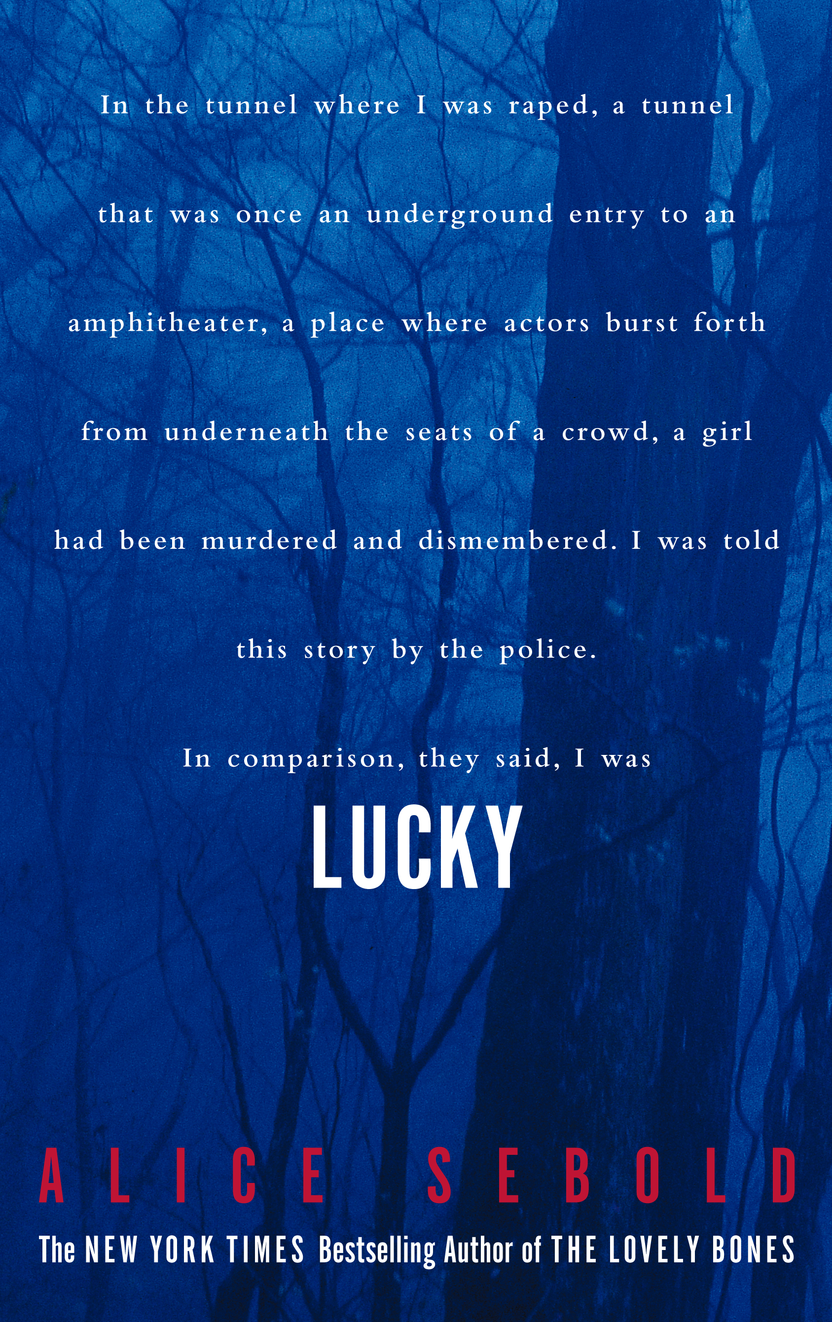 Lucky book by alice sebold official publisher page simon cvr9780684857824 9780684857824 hr fandeluxe Choice Image