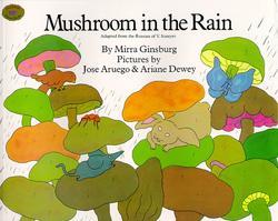 Mushroom in the Rain