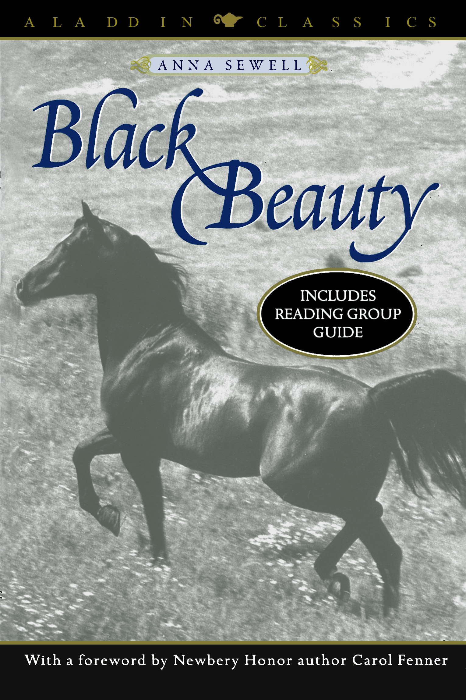 Story of black beauty with pictures