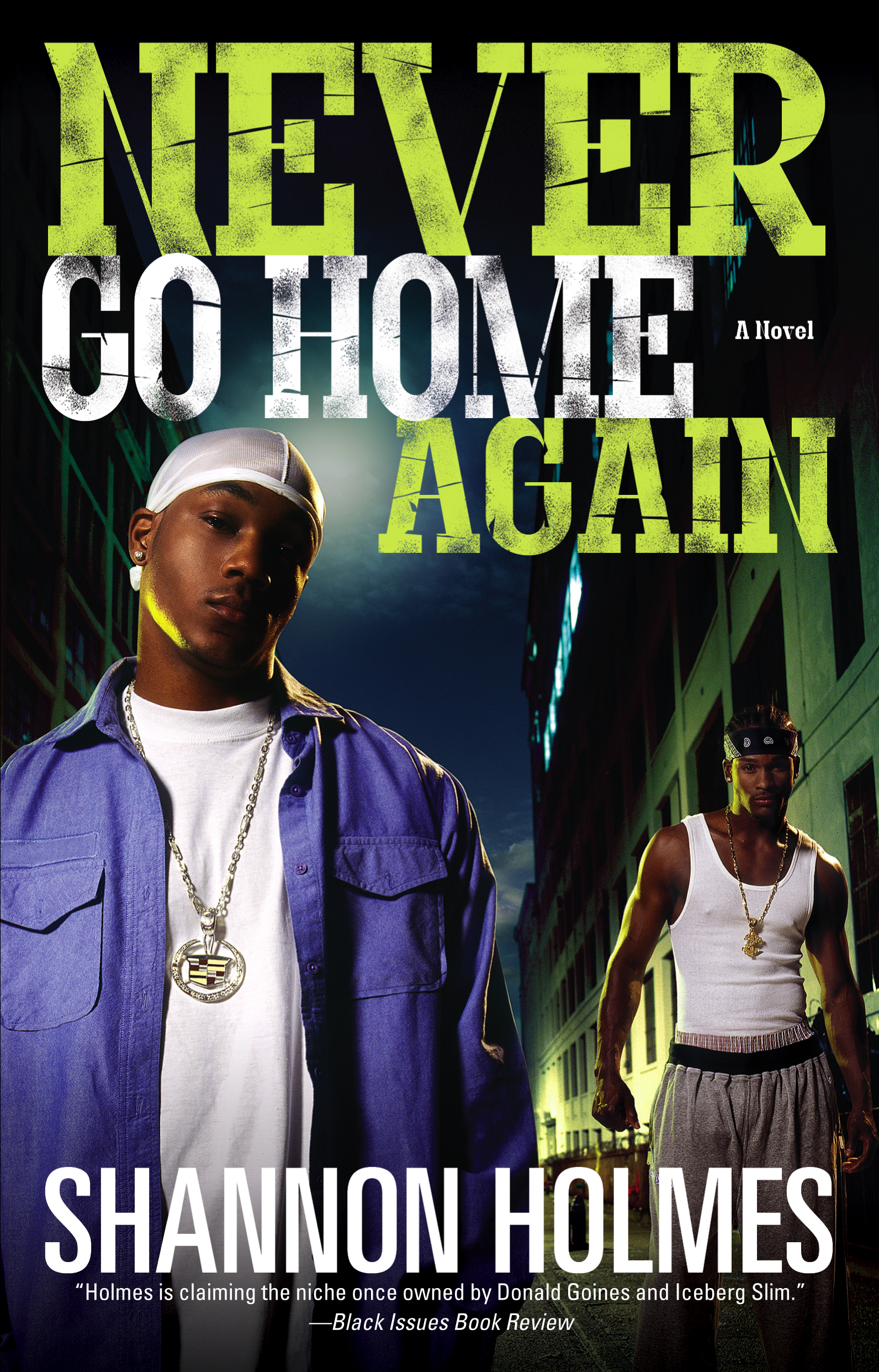 Never Go Home Again Book By Shannon Holmes Official Publisher